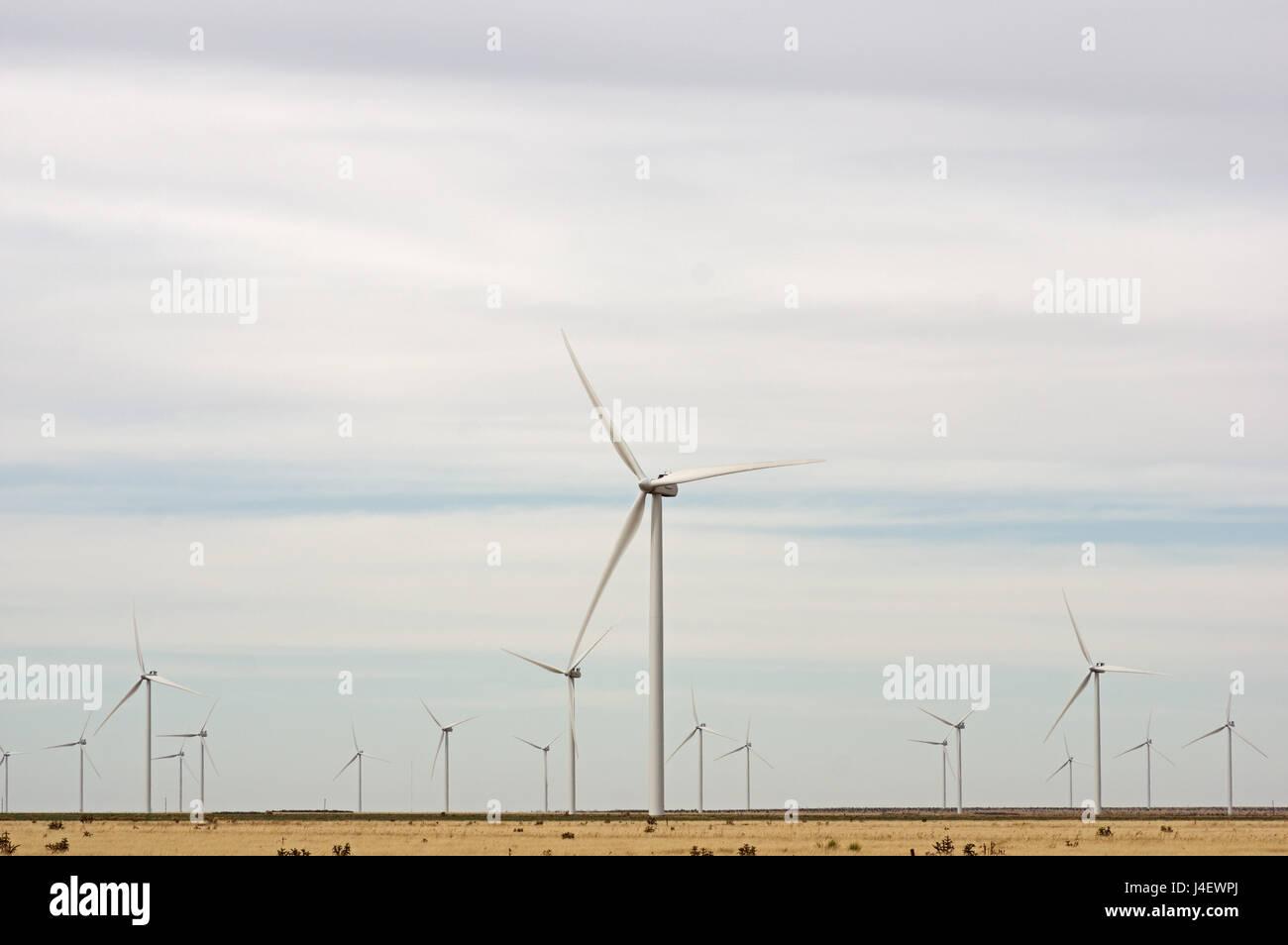 Un campo de Texas oeste de turbinas eólicas proporcionan energía renovable Imagen De Stock