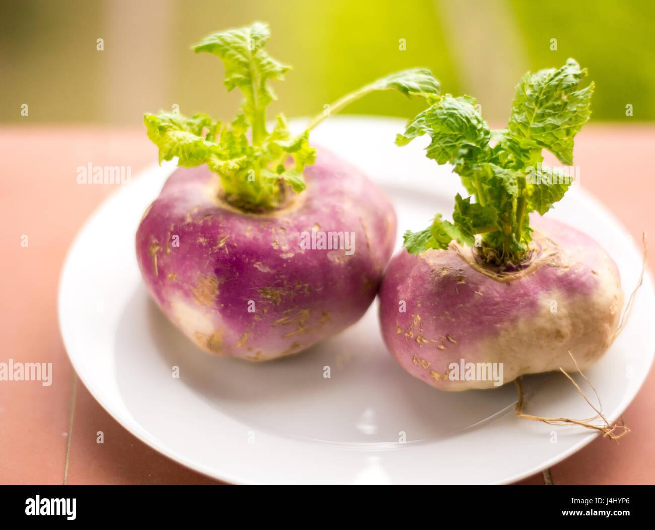 Primer plano de dos orgánicos nabos púrpura con hojas en una placa blanca en un país ajuste de estilo Imagen De Stock