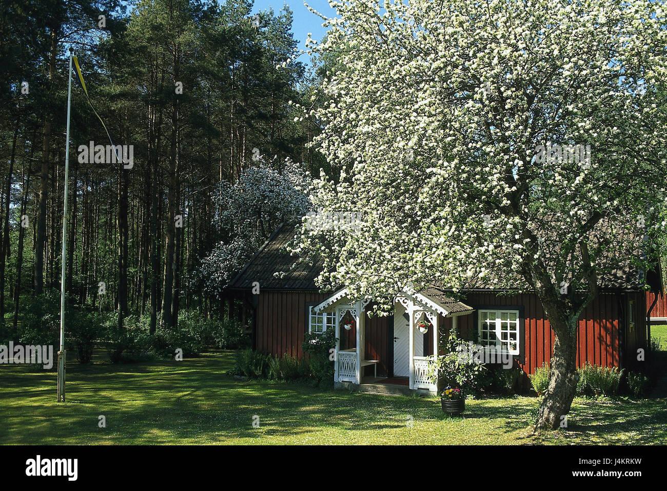 Los suecos, Västergötland, muelle, madera, casa residencial en Escandinavia, la naturaleza, el descanso, el silencio, la casa, árbol, flor, casa, casa de madera Foto de stock