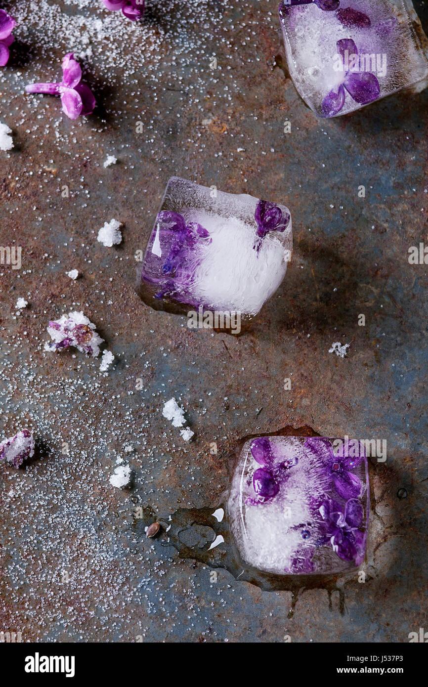 Cubitos de hielo con flores de color lila, azúcar blanco y lila azucaradas flores más antiguo fondo de Imagen De Stock