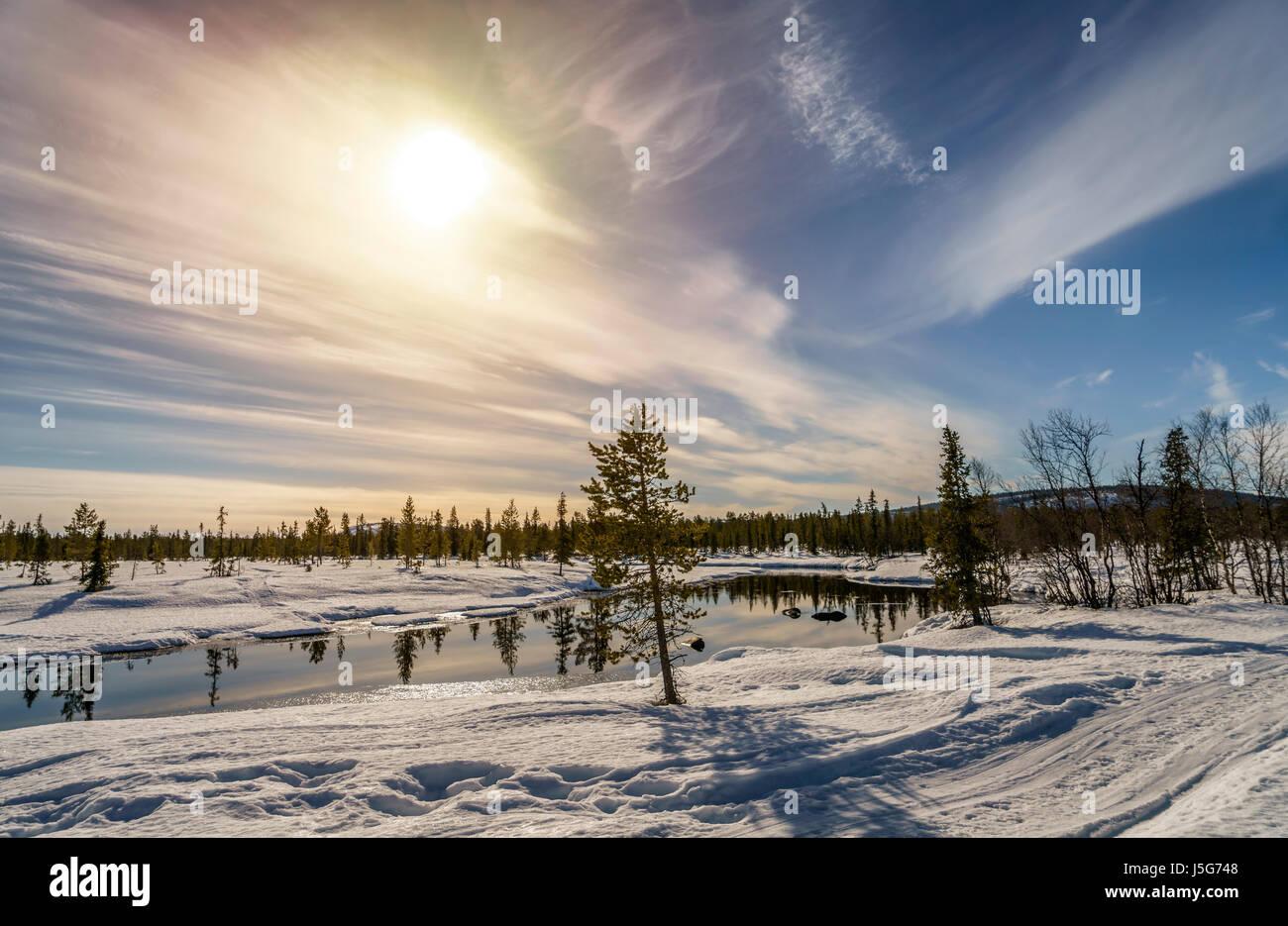 Paisaje invernal, Laponia, Suecia Foto de stock
