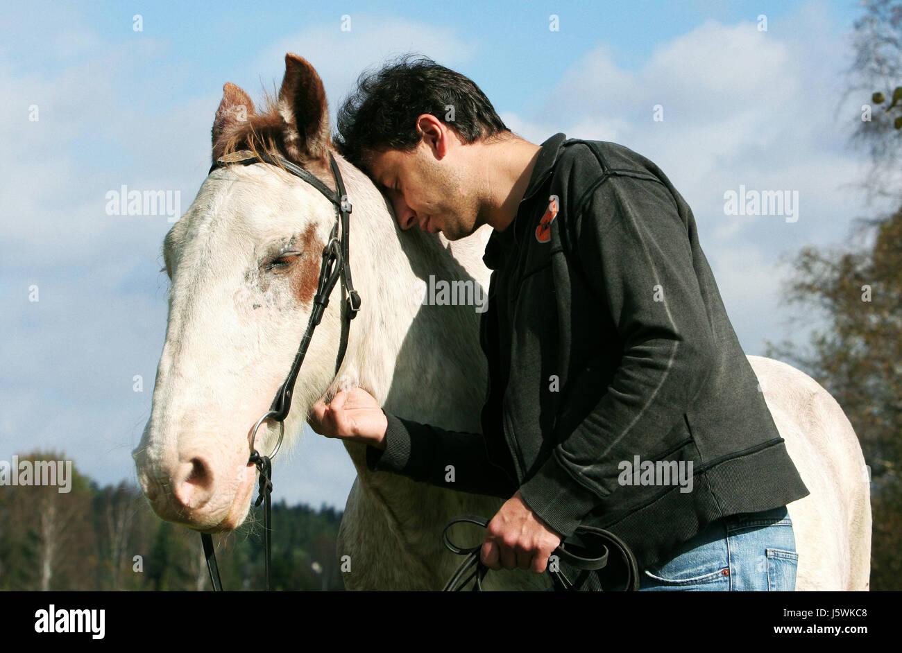 Amistad caballo castrado solidaridad molde Mano hombre amistad tiempo libre libre Foto de stock
