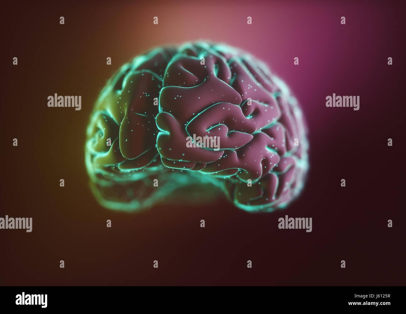 Ilustración 3D. Imagen estilizada de un cerebro dentro de un líquido con burbujas de aire alrededor. Imagen De Stock