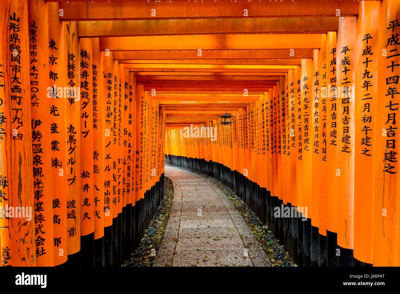 Tori rojo Gate en Fushimi Inari Shrine en Kyoto, Japón. Imagen De Stock