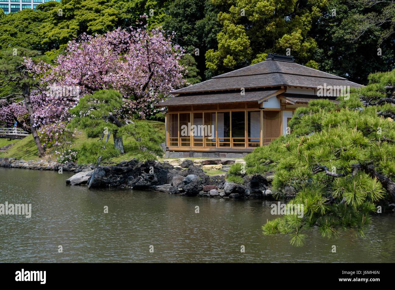 Tetería trague o no Tsubame Ochaya, Hama Rikyu jardines japoneses. Imagen De Stock
