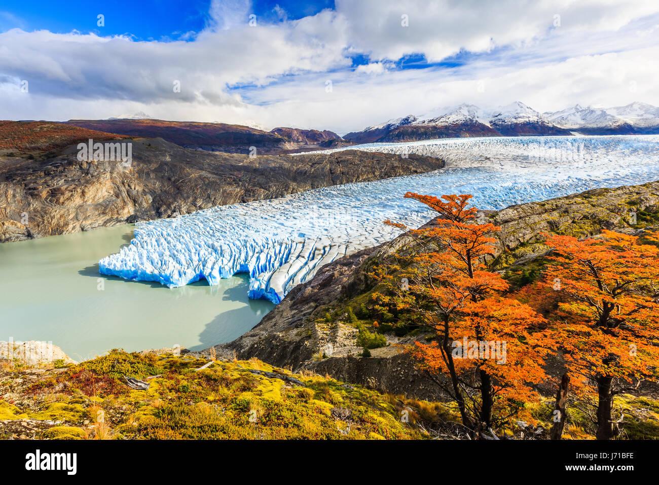 Parque Nacional Torres del Paine, Chile. Glaciar Grey. Foto de stock