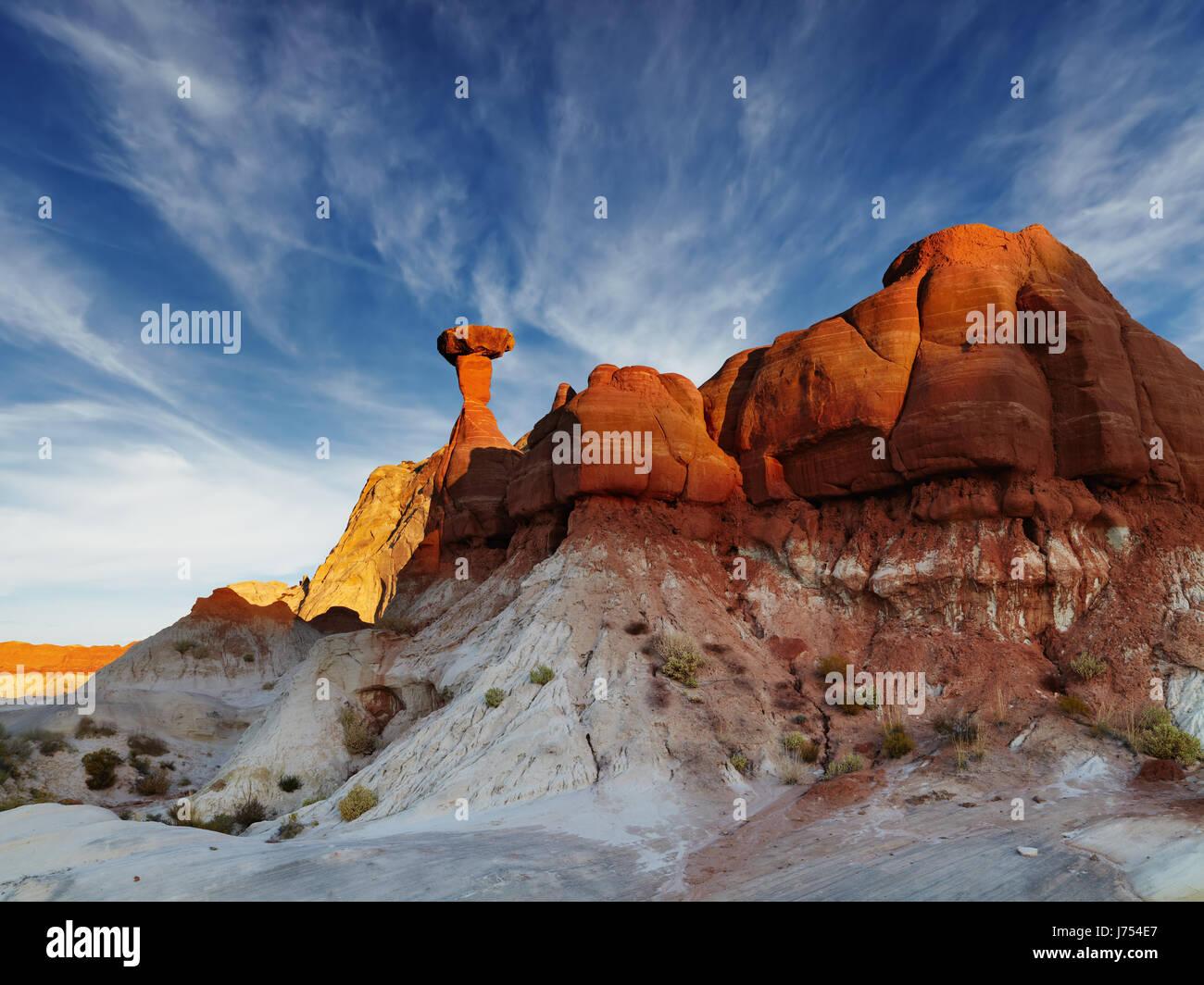 Toadstool Hoodoo increíble roca con forma de hongo en el desierto de Utah, EE.UU. Imagen De Stock