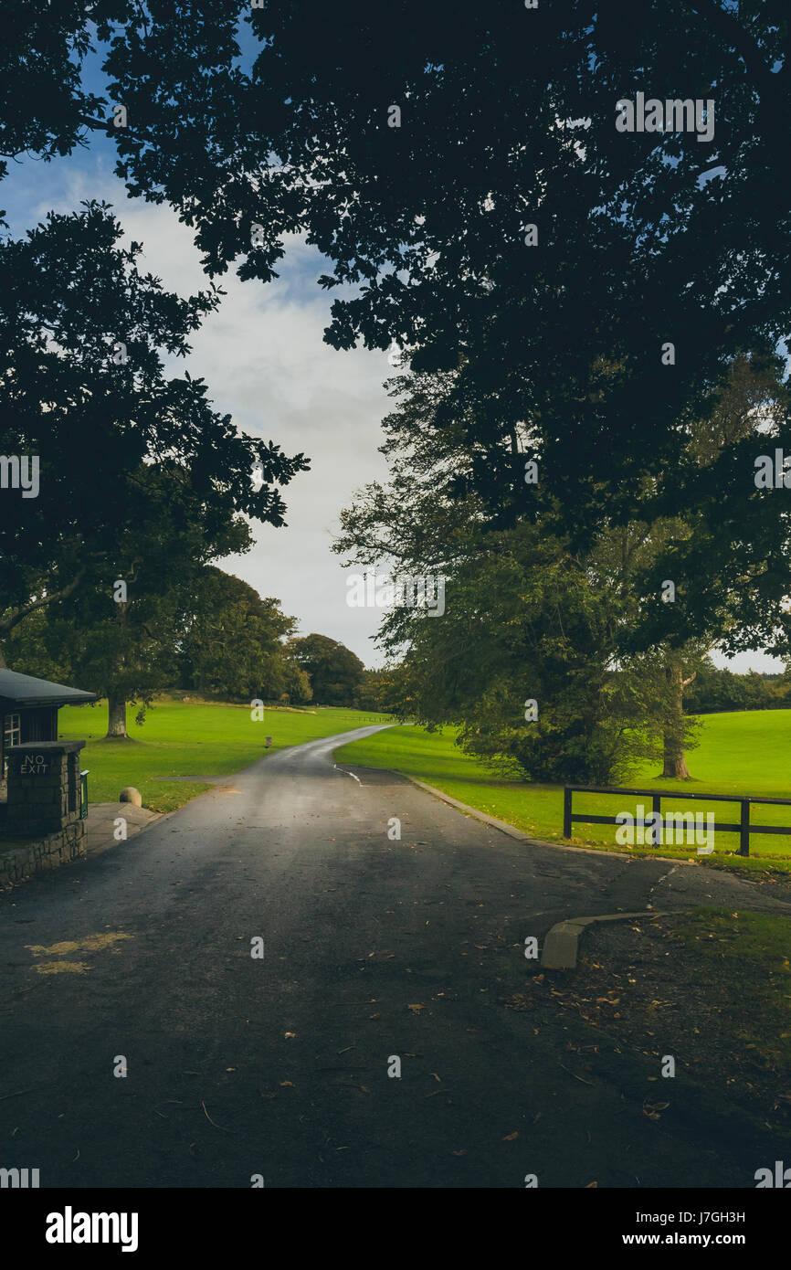 Un país camino a la tollymore parque rodeado de árboles. Foto de stock