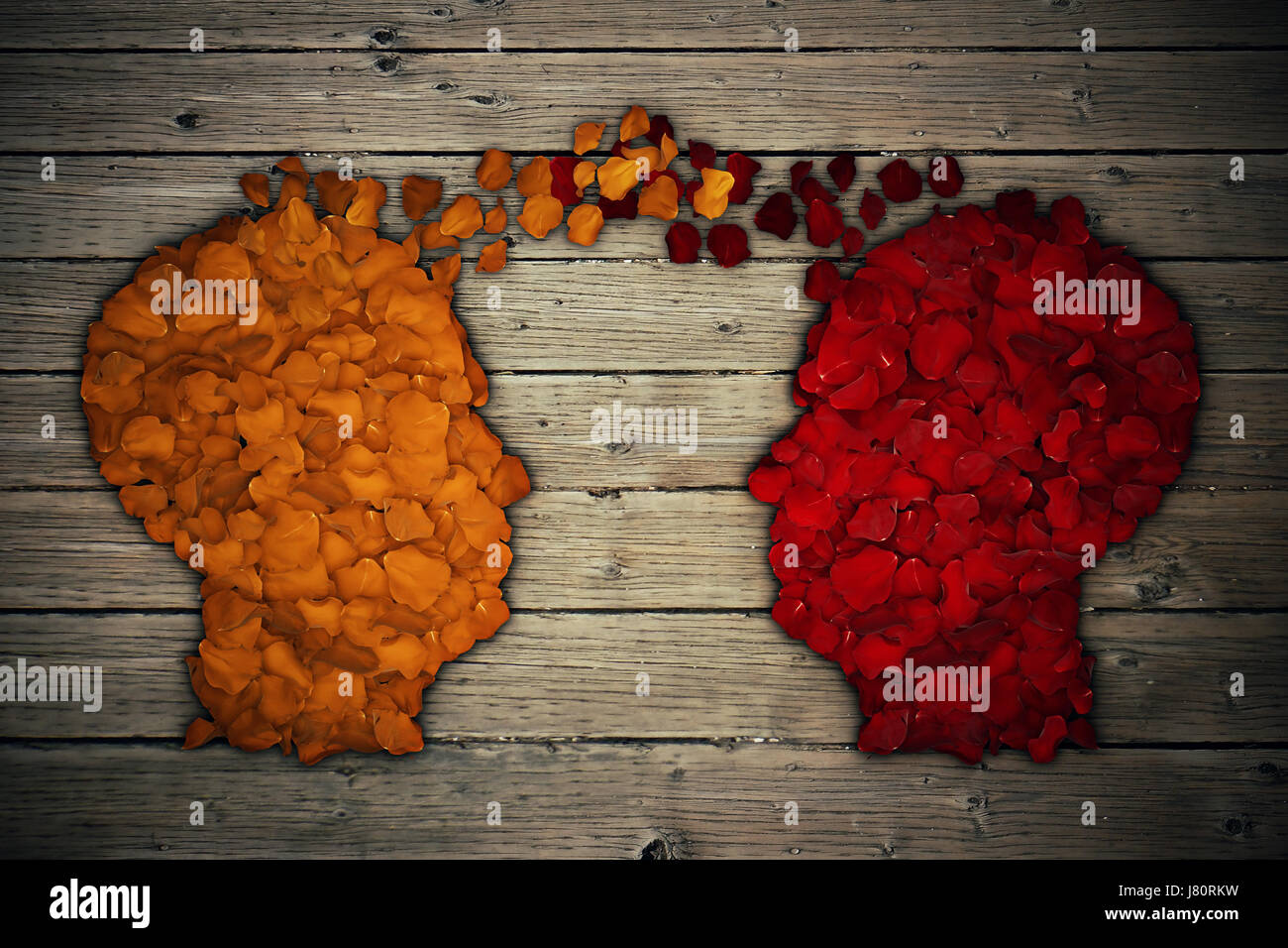 Pétalos de rosas rojas y amarillas dispuestas en forma de cabeza humana generar intercambio del pensamiento y la Foto de stock