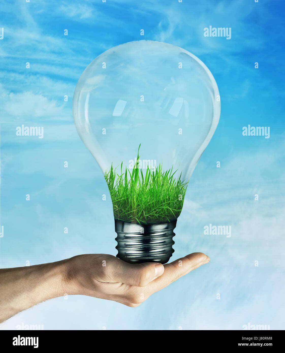 Mano humana sosteniendo una bombilla con hierba verde que crece en su interior, sobre fondo de cielo azul. Concepto Foto de stock