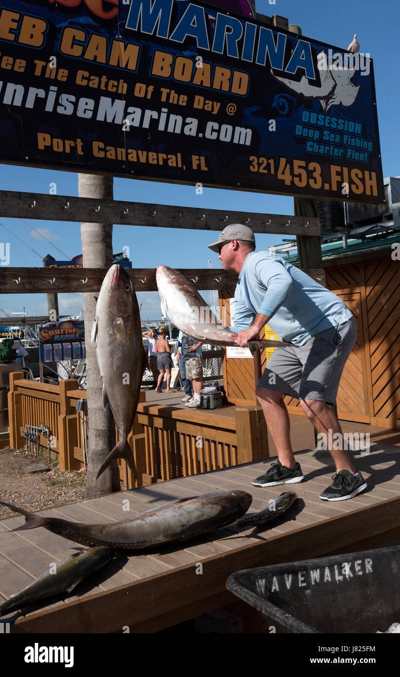 El capitán del barco de pesca colgando el pescado capturado por el público para ver. Puerto Cañaveral, Imagen De Stock