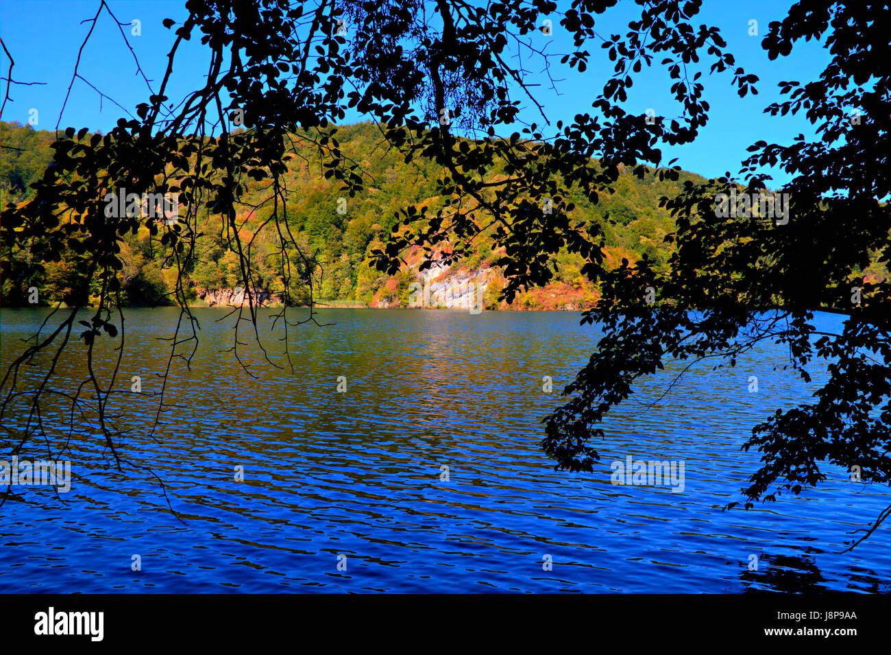 Azul, viajes, ciudad, pueblo, medio ambiente, medio ambiente, tonos, colores, árboles, árboles Foto de stock