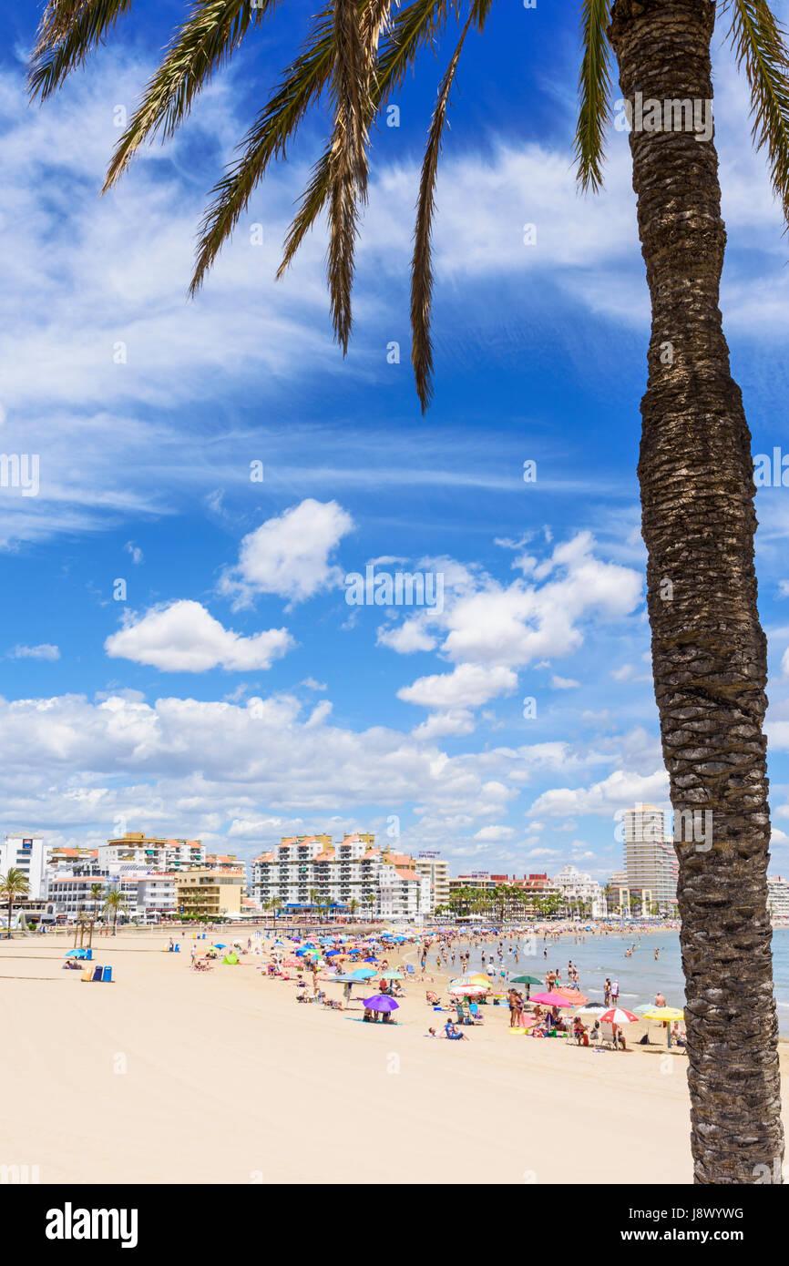 Escena de playa enmarcadas de palmeras, Playa Norte, Peñíscola ...
