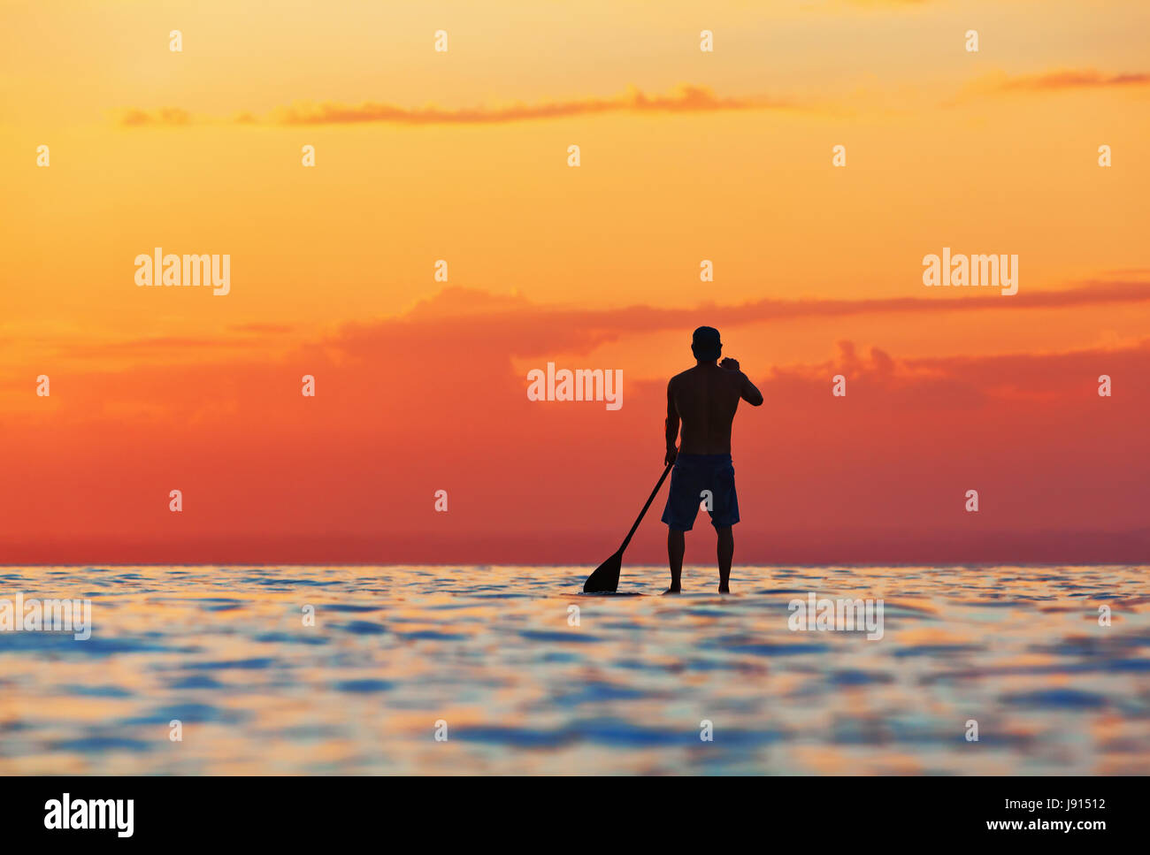 Paddle boarder. Sunset silueta negra del joven deportista remando en stand up paddleboard. Estilo de vida saludable. Imagen De Stock