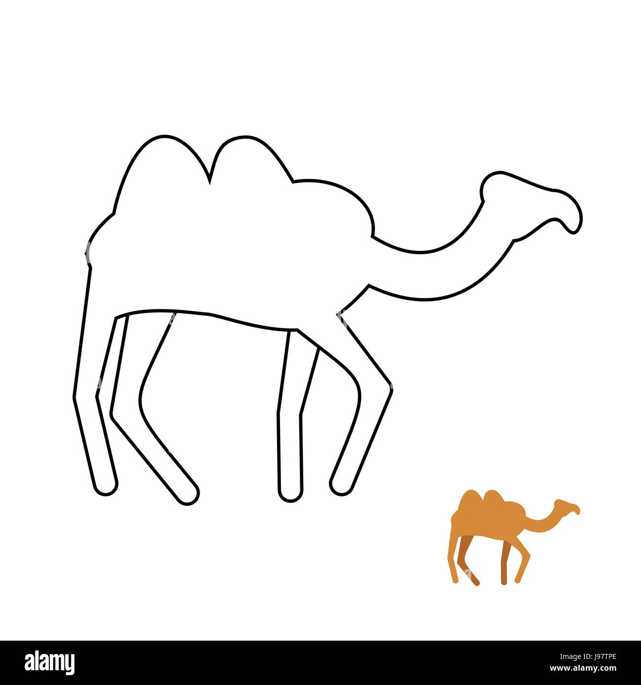 Libro Para Colorear De Camello Animales Del Desierto Ilustración