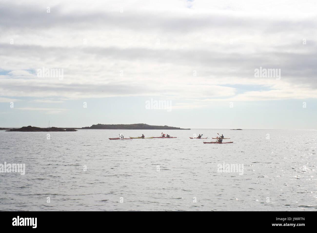 Grupo kayak en la Bahía de Dublín, Irlanda Foto de stock