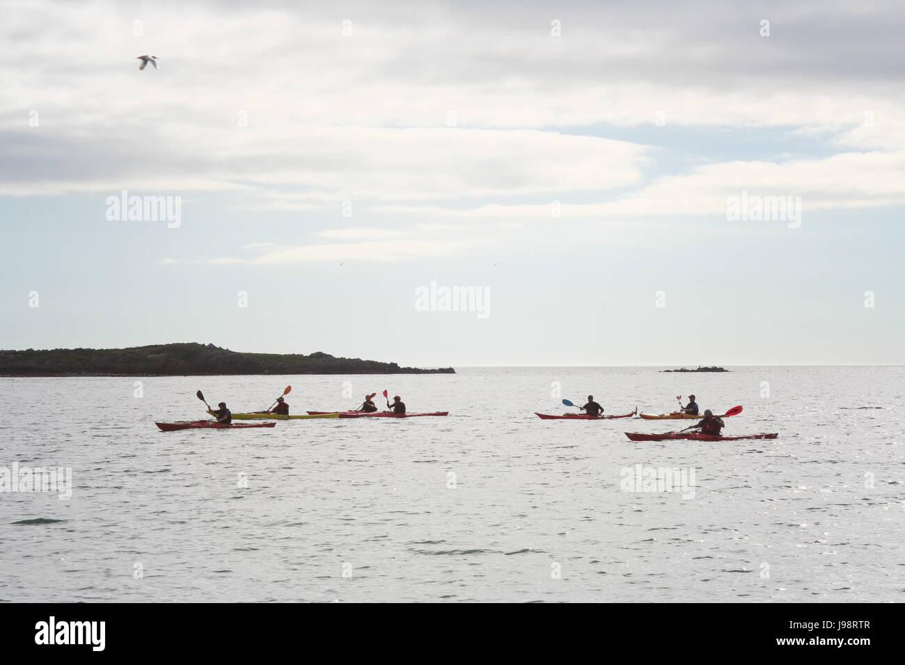 Grupo , kayak canoa en la Bahía de Dublín, Irlanda Foto de stock