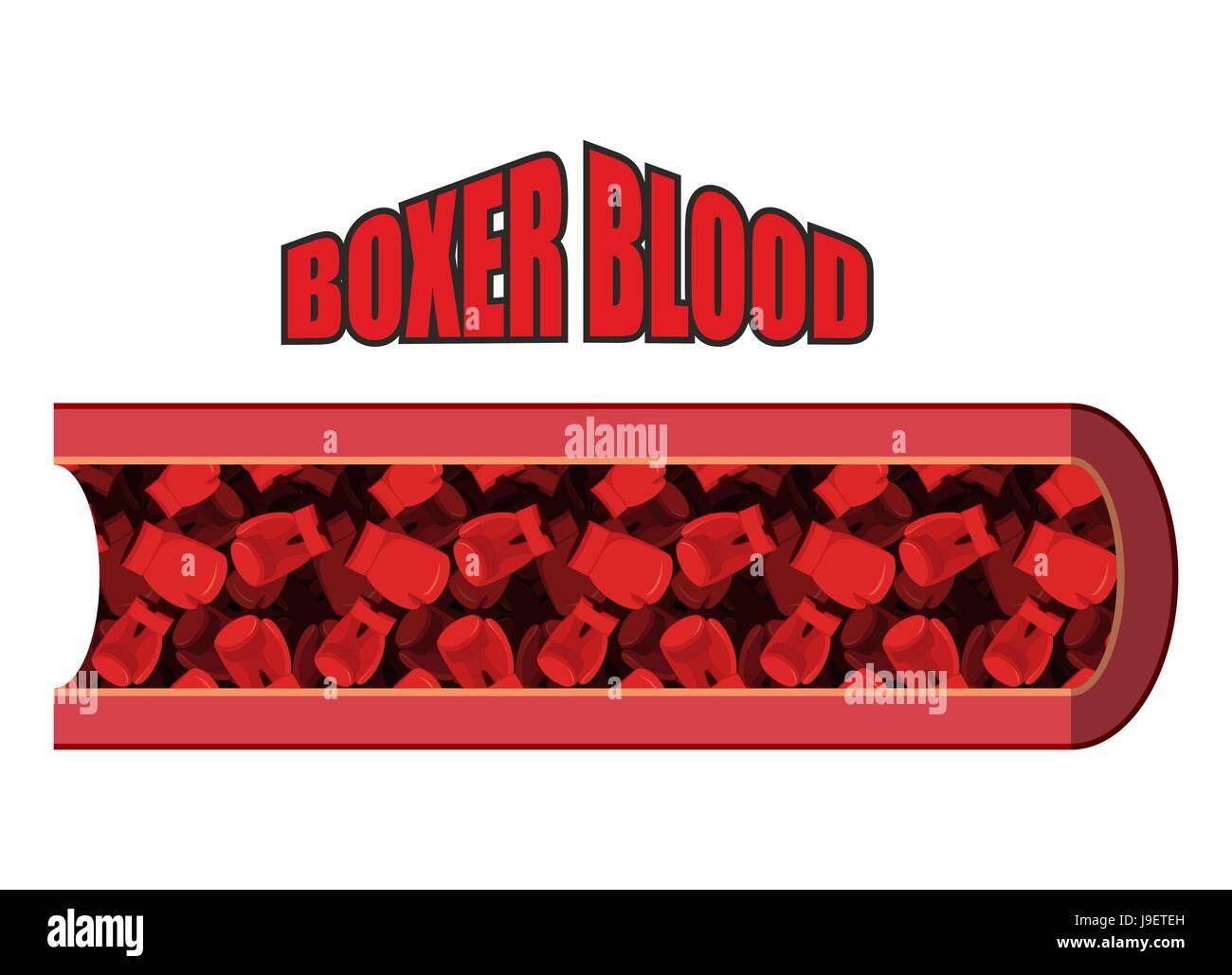 Sangre de boxeador. Los glóbulos rojos en forma de guantes de boxeo ...