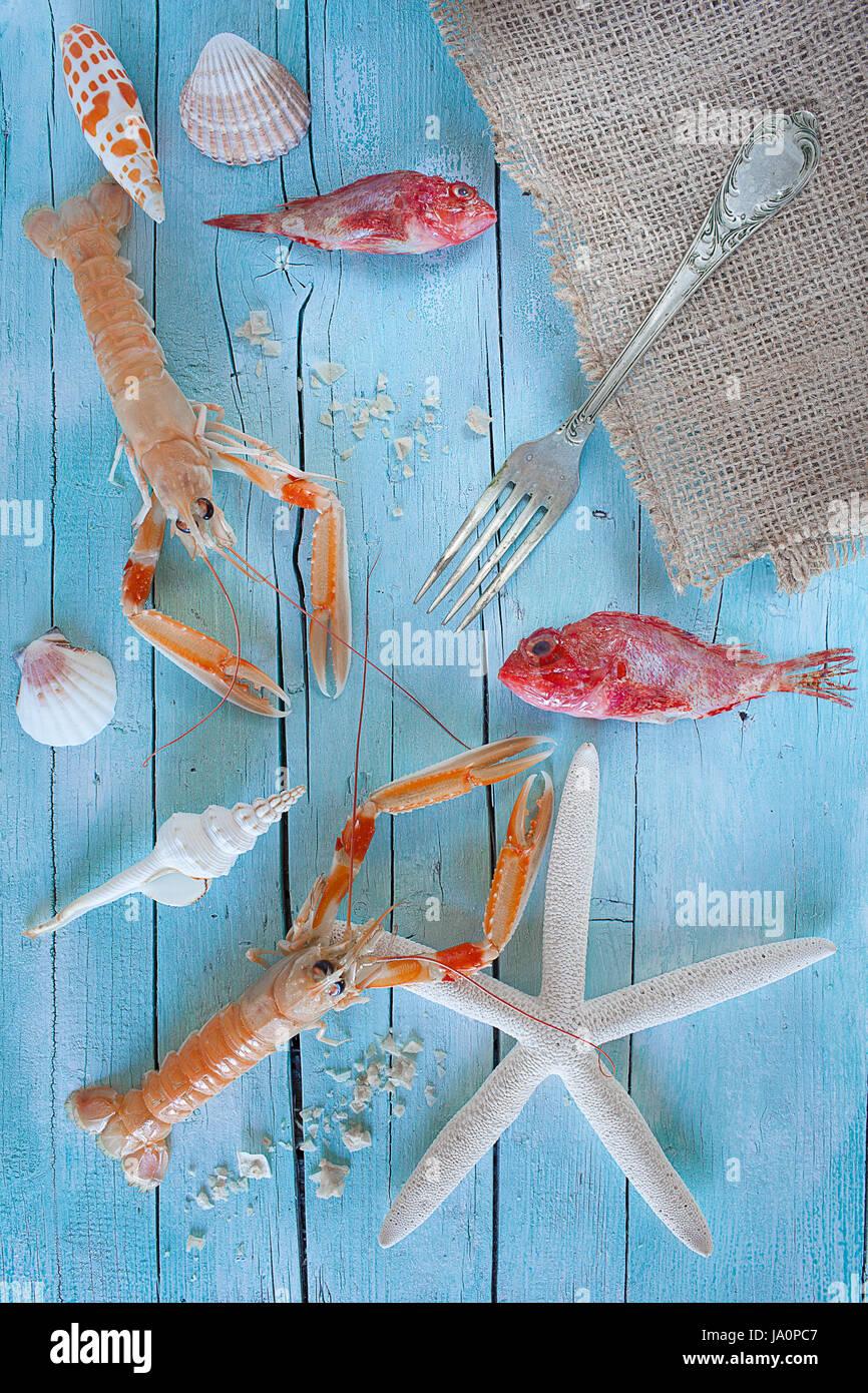 Concepto de mar sobre la mesa: raw, langostas, caracoles y scorpionfish sobre azul de fondo de madera. Foto de stock