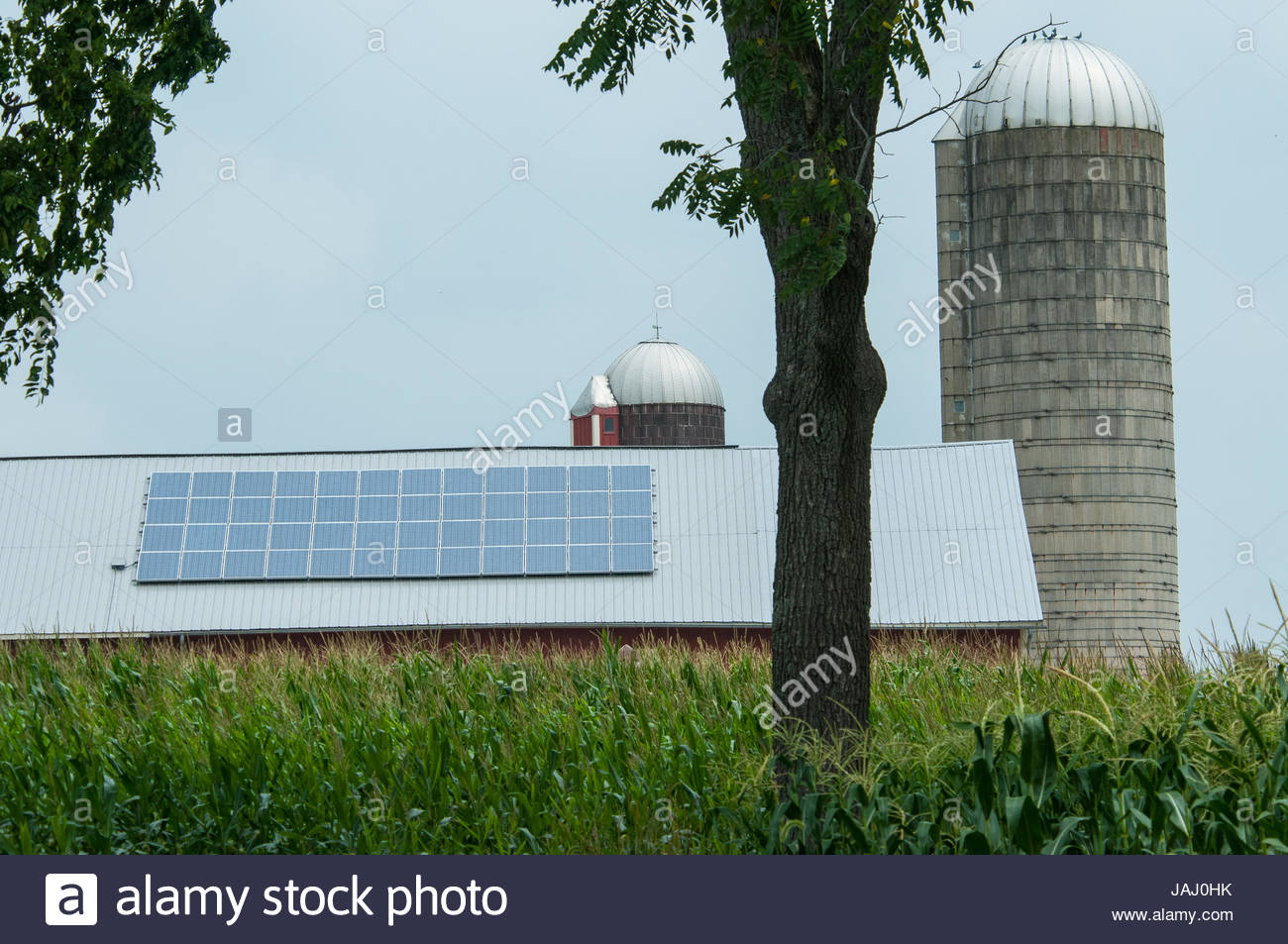 Línea de paneles solares en el techo de un granero en Pennsylvania. Imagen De Stock