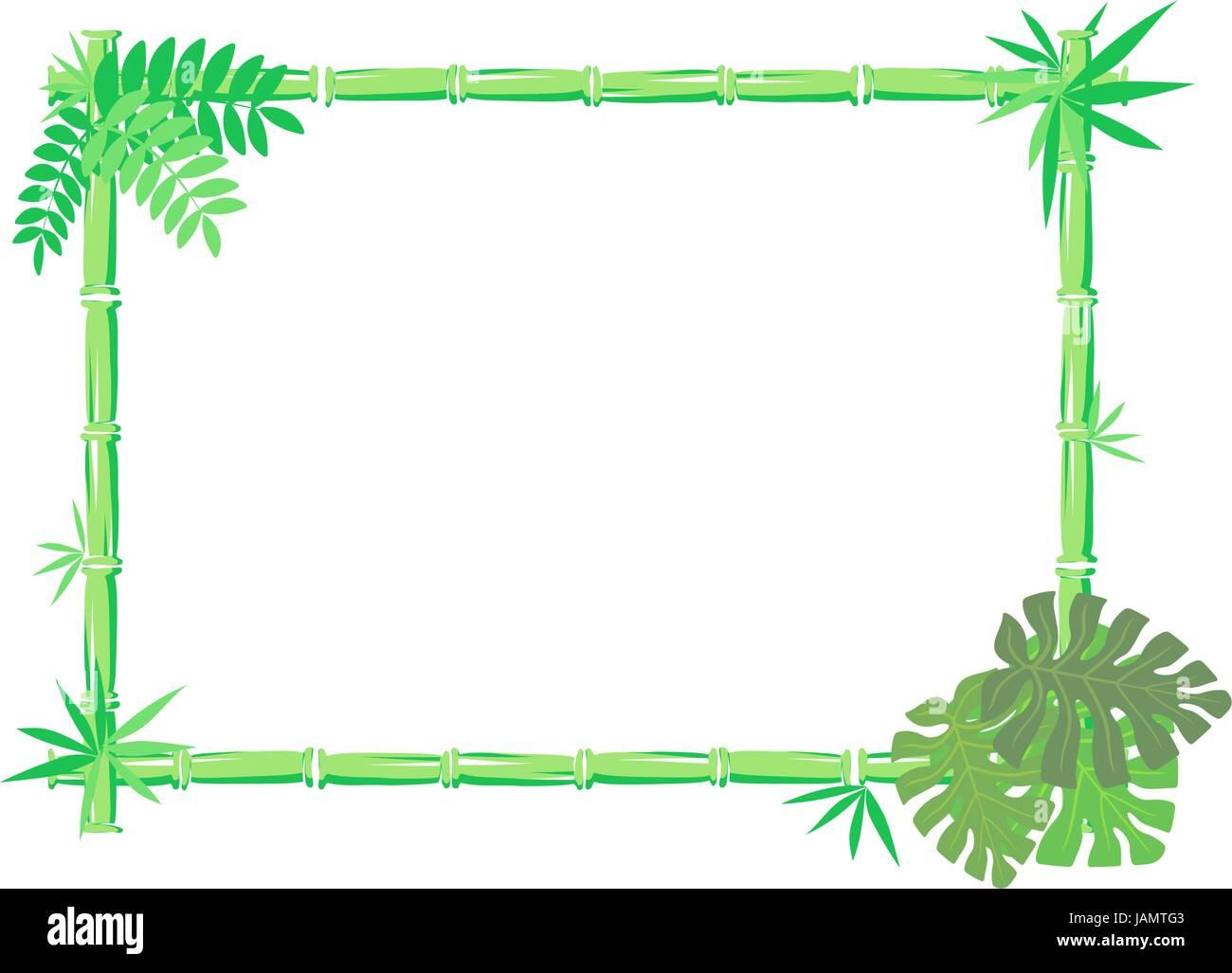 Imagen vectorial de marco de bambú aislado sobre fondo blanco ...