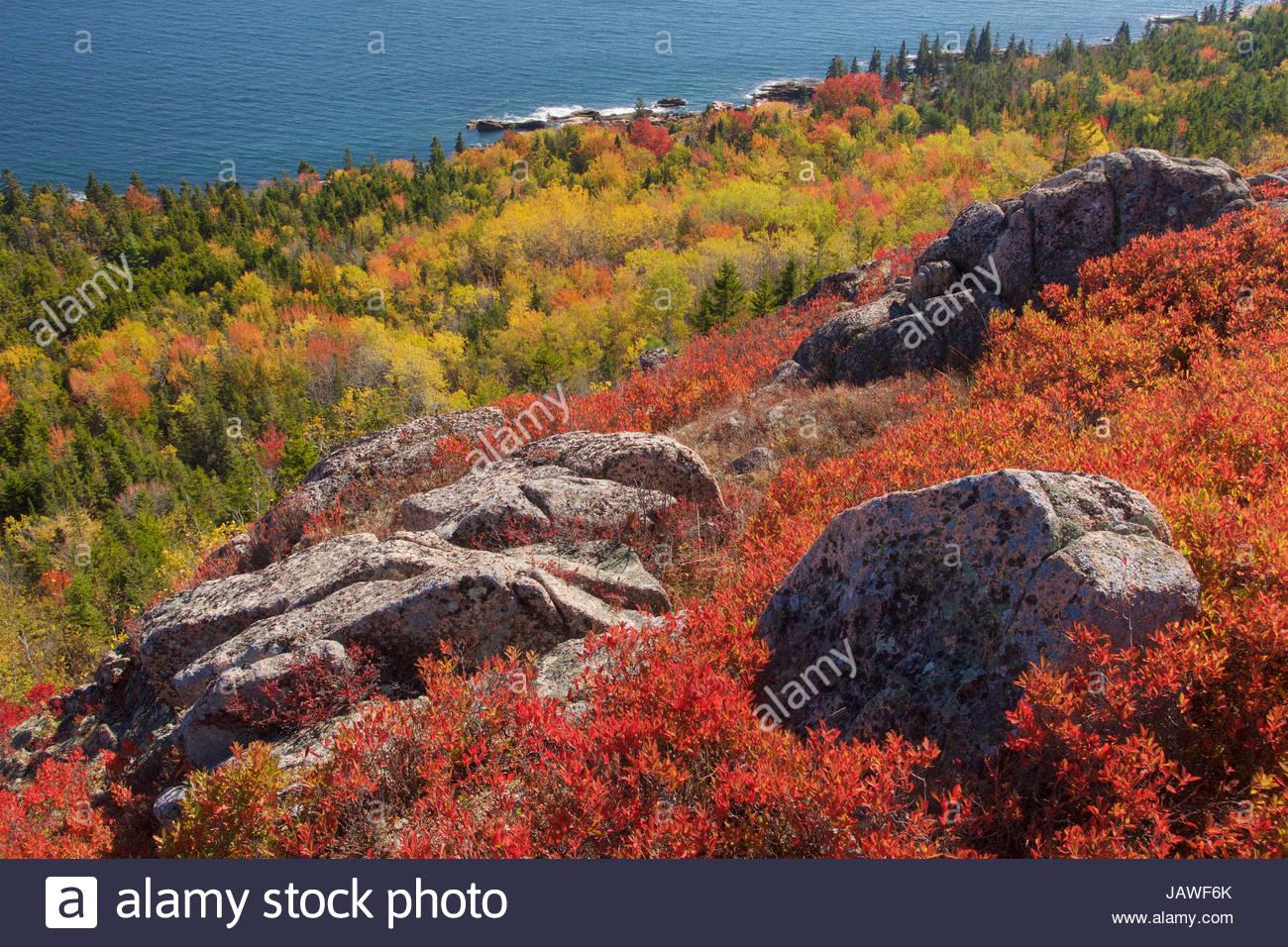 Vibrantes colores de otoño en las laderas que conducen a la orilla oriental del Parque Nacional de Acadia. Imagen De Stock