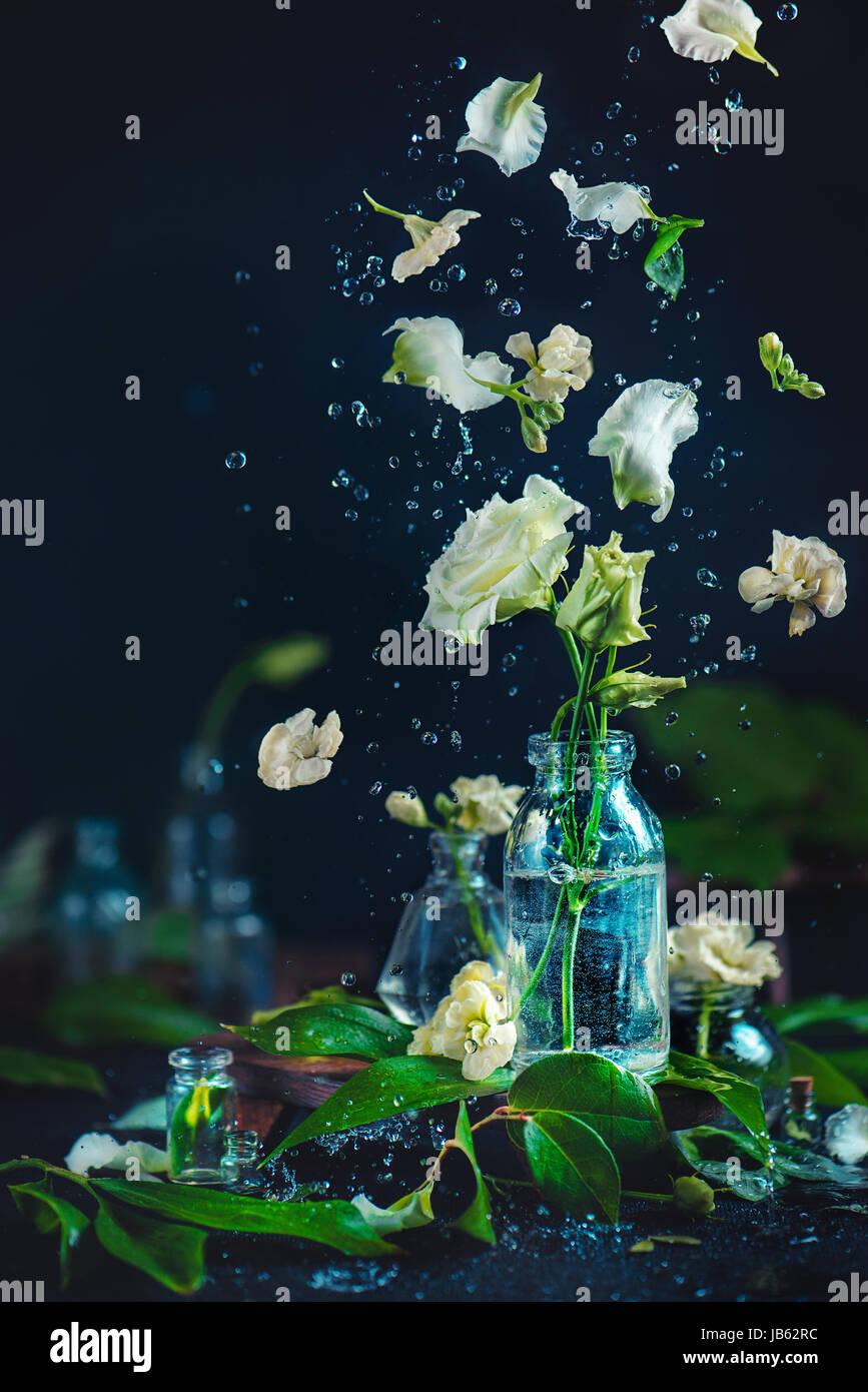 Flores Pétalos Y Gotas De Agua En Movimiento Sobre Un Fondo Oscuro