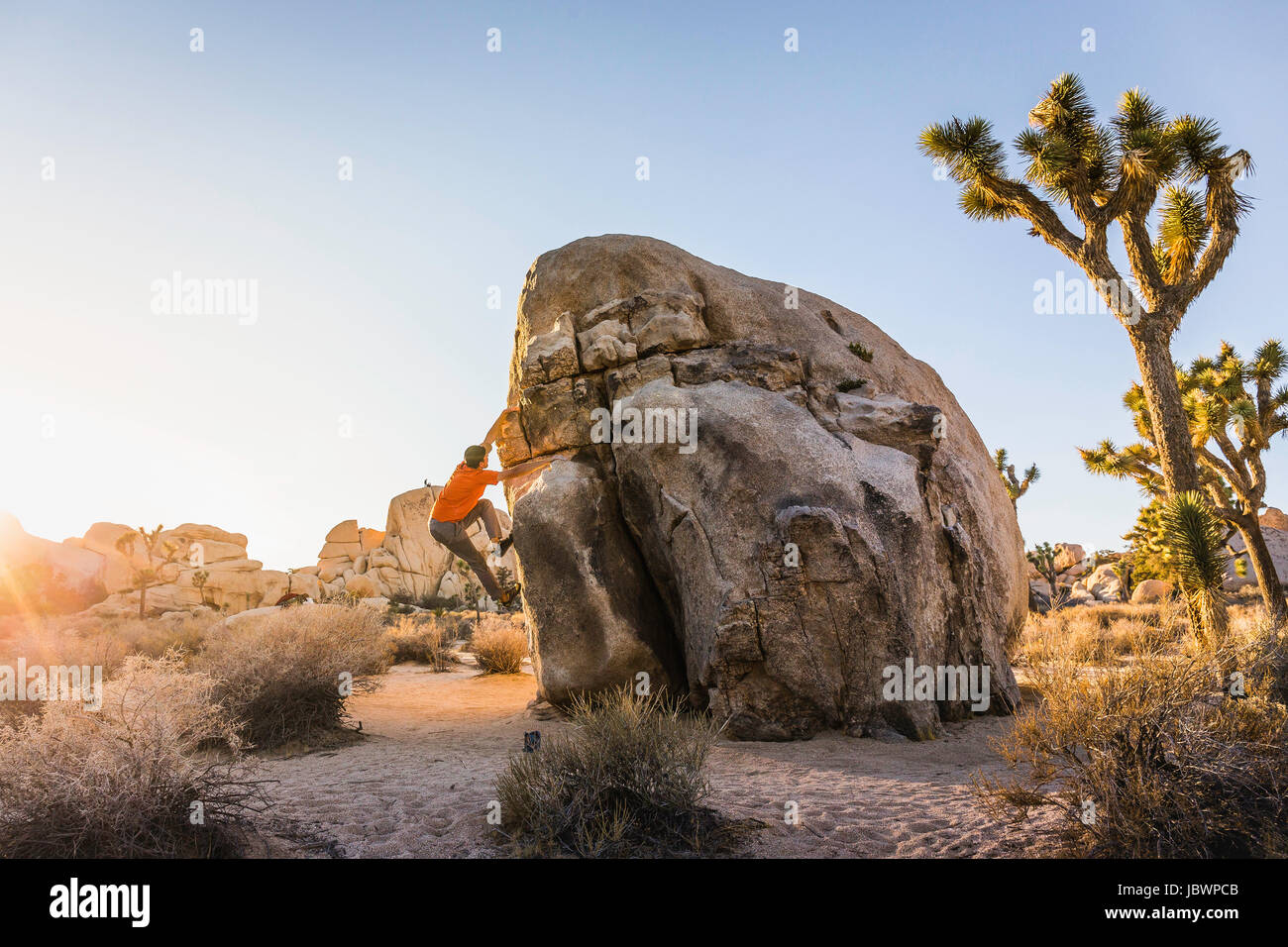 Macho boulderer moving up boulder en el Parque Nacional Joshua Tree al anochecer, California, EE.UU. Imagen De Stock