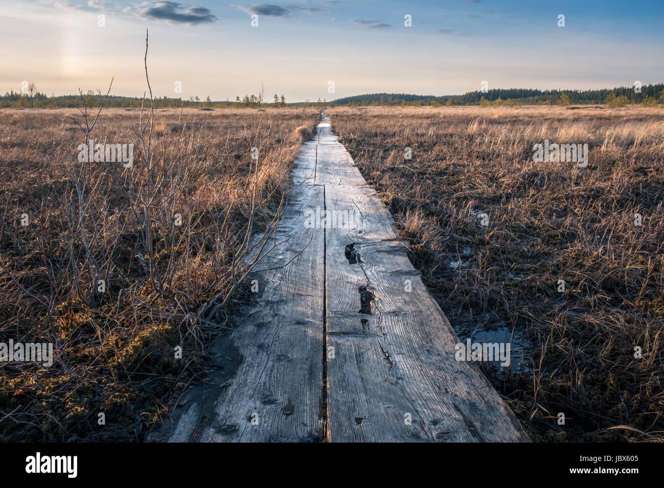 Paisaje con puesta de sol al atardecer en el pantano de Finlandia Imagen De Stock