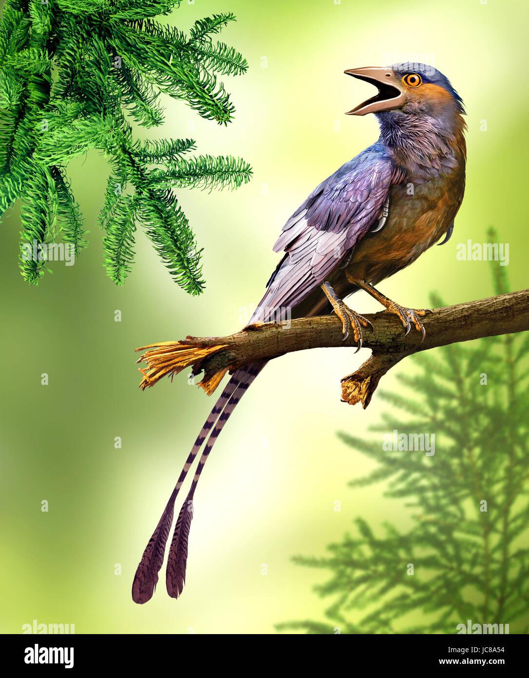 Confuciusornis es un género de aves de tamaño cuervo primitivo desde el Cretácico temprano Imagen De Stock