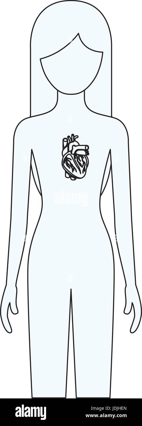 Dibujo silueta de persona del sexo femenino con sistema de corazón ...