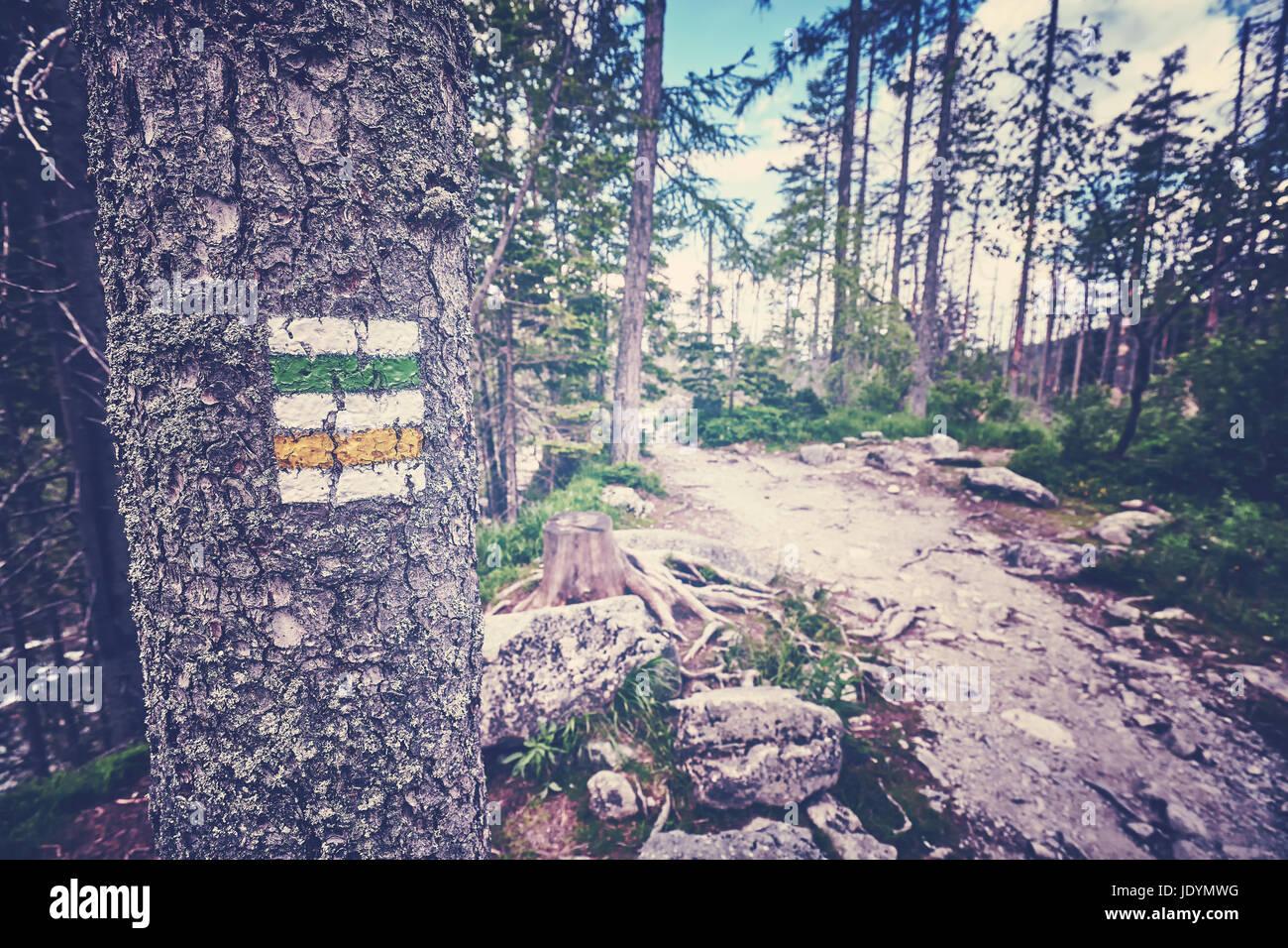 Tonos Vintage sendero marcado pintado en árbol en altas montañas Tatra, Eslovaquia. Foto de stock