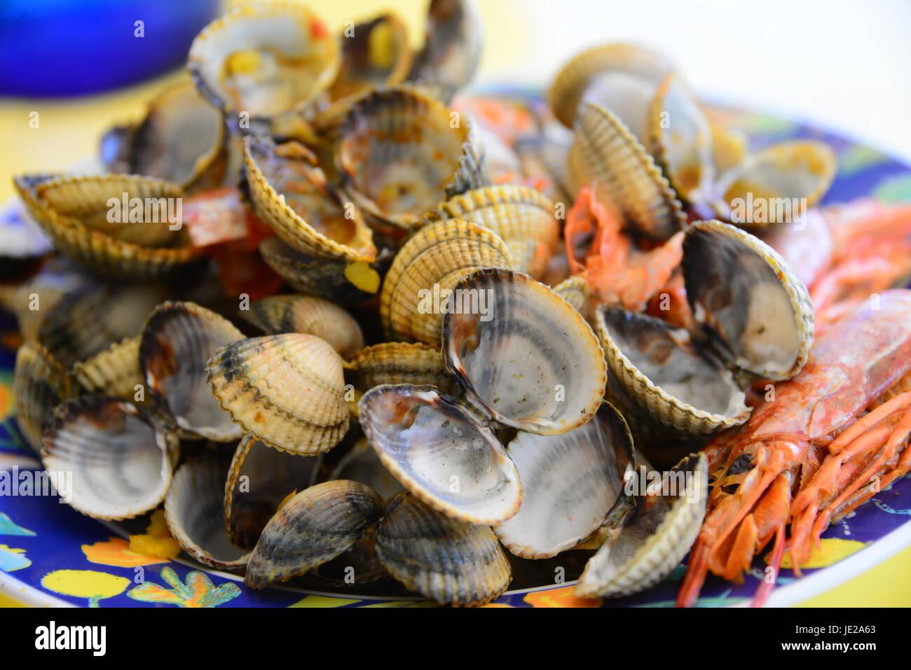 Berberechos - España Foto de stock