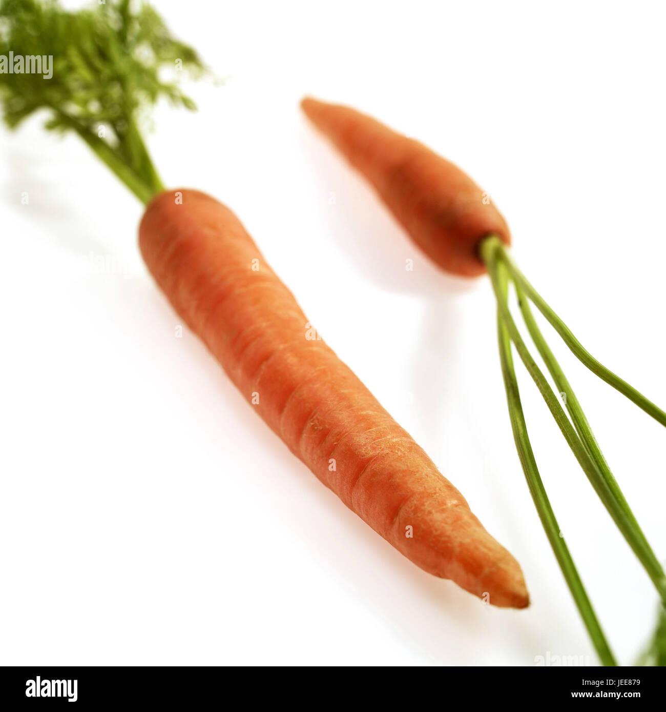 Salvaje Zanahoria Daucus Carota Verduras Fondo Blanco Fotografia De Stock Alamy El elixir de la zanahoria salvaje permite concentrarse o nuclearse en uno mismo pudiendo ver la vida desde sus propios ojos. alamy