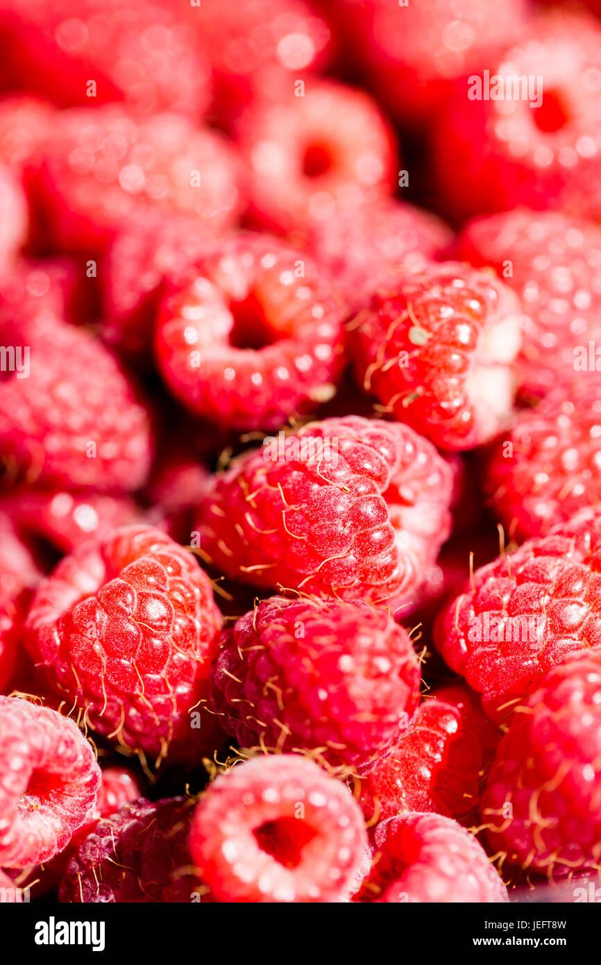 Full Frame frambuesas macro rosa roja antecedentes detallados. Cultivo vertical Imagen De Stock