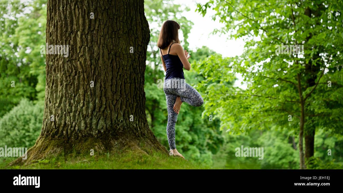 Mujeres jóvenes y atractivas es practicar el yoga y haciendo Vrikshasana asana en la mañana. Imagen De Stock