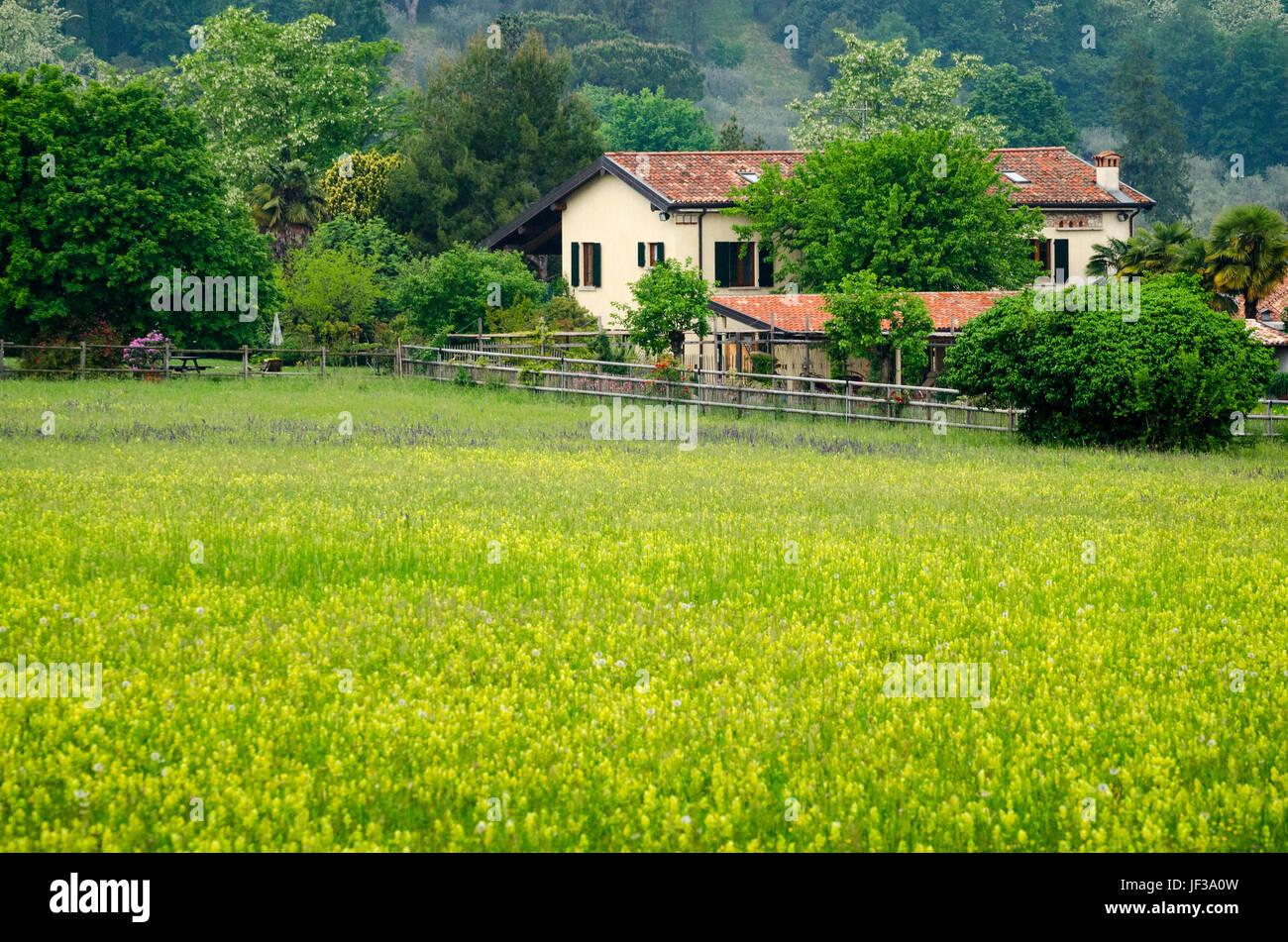 Granja en un campo Foto de stock