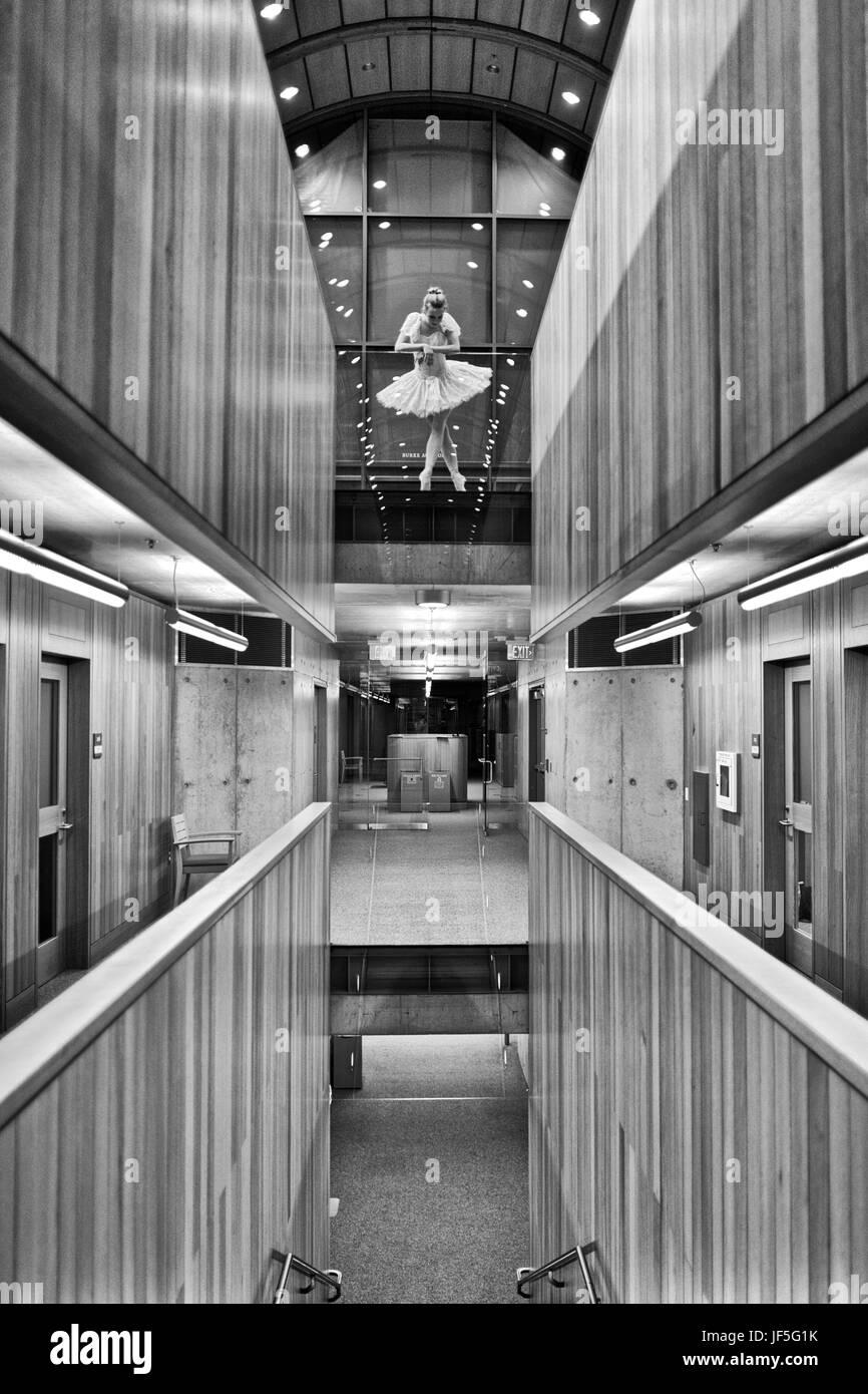 Una bailarina bailando en Kroon Hall en la Universidad de Yale. Foto de stock