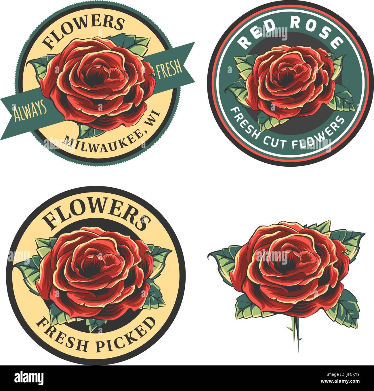 Conjunto De Flores Vintage Logo Insignias Y Emblemas Ilustracion