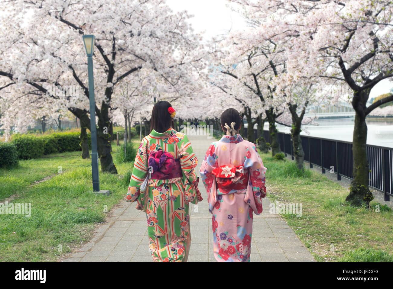 Par de mujeres asiáticas vistiendo kimono tradicional japonés en Sakura Garden en Osaka, Japón. Imagen De Stock