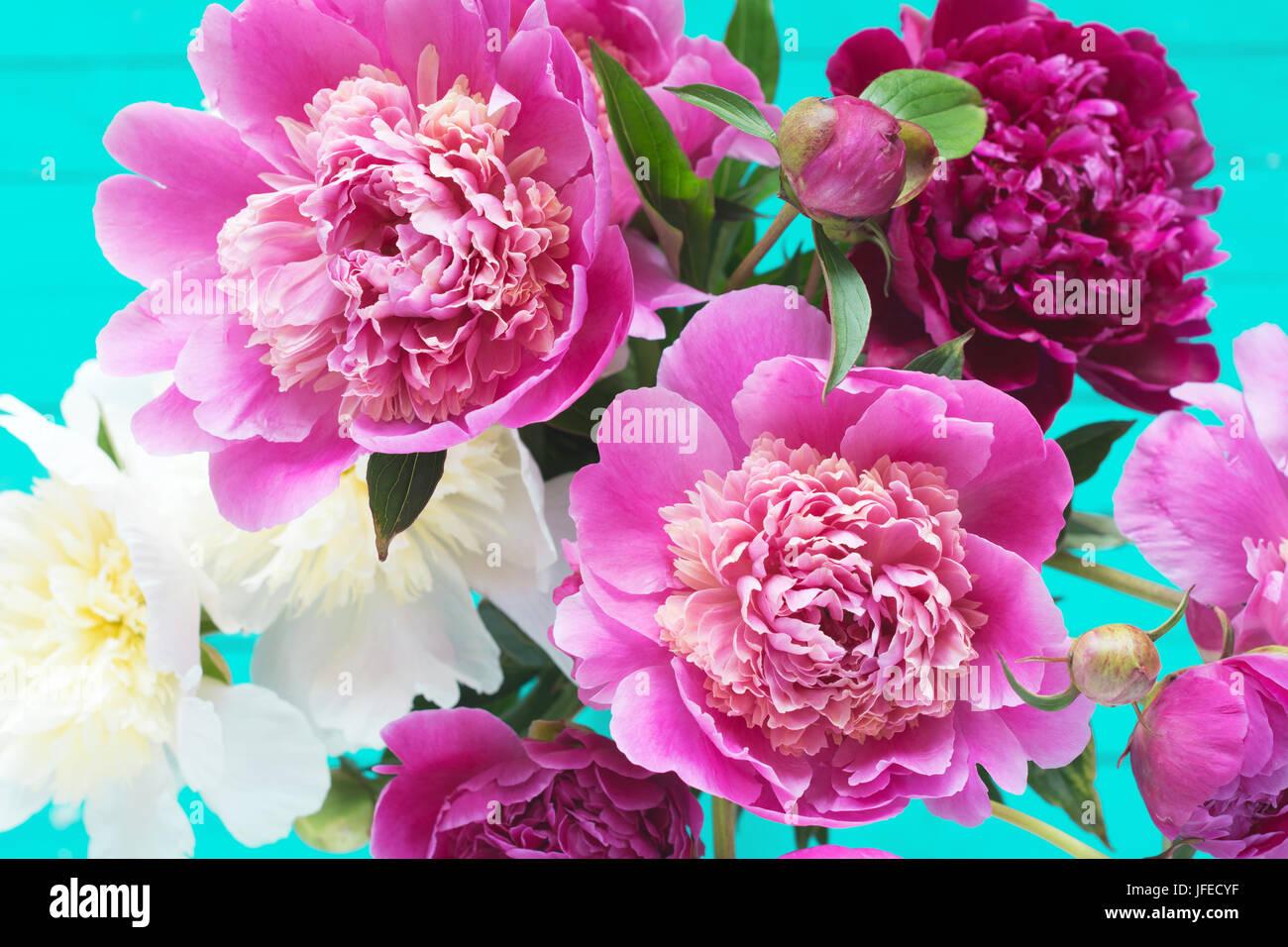 Fondo De Madera Vintage Con Flores Blancas Manzana Y: Fondo Floral Con Hermosa Rosa, Morado Y Blanco Peonías