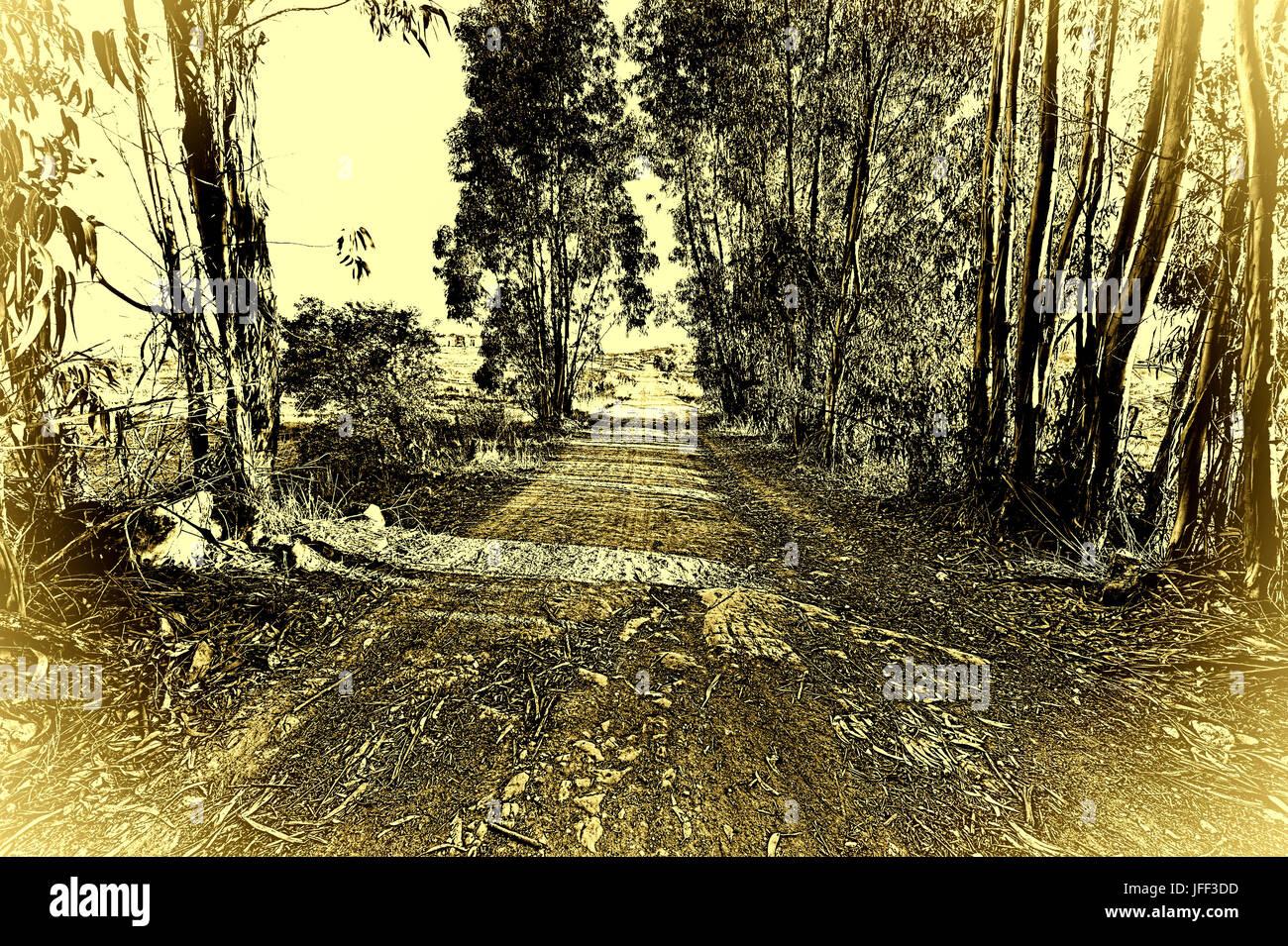 País camino de tierra Foto de stock
