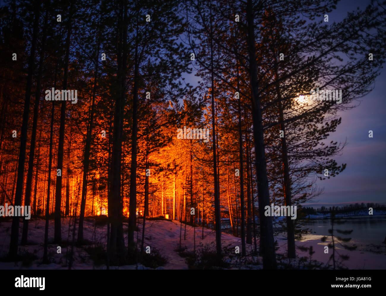 La luz de la luna y naranja resplandor de una fogata, Laponia, Finlandia Imagen De Stock
