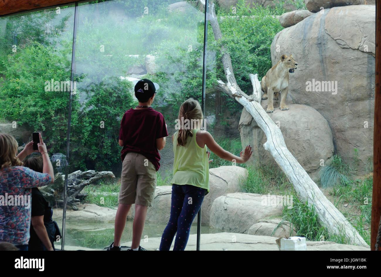 Zoológico de Colorado Springs, EE.UU. Foto de stock