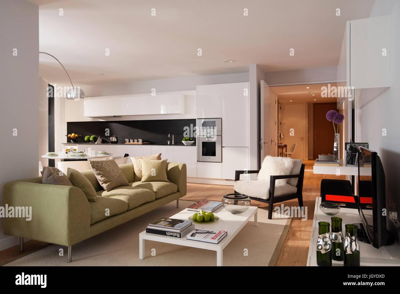 Plan abierto salón y cocina con sofá verde Imagen De Stock