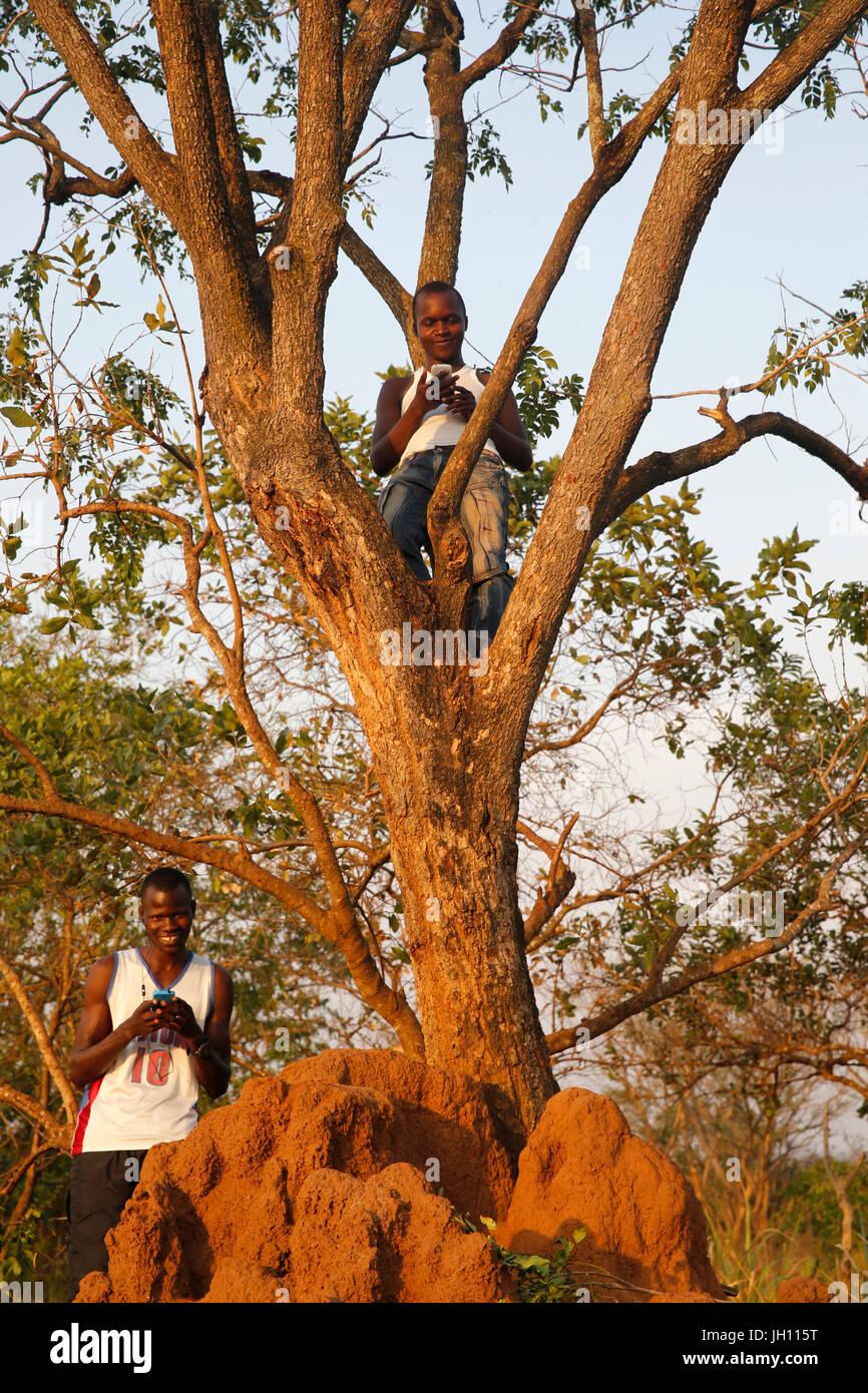 Búsqueda de Uganda para señal de teléfono móvil en un área rural remota. Uganda. Imagen De Stock