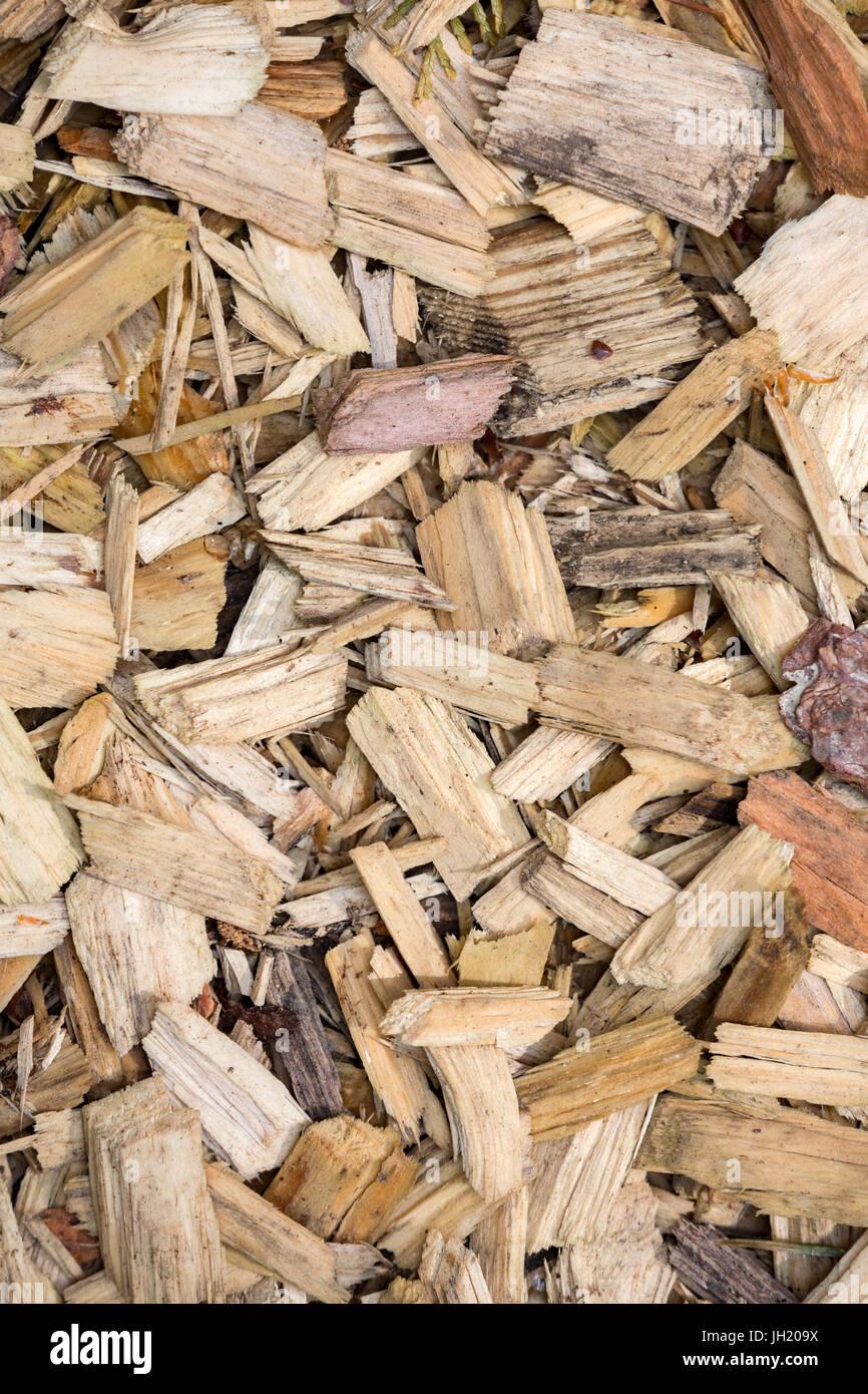 Texturas de astillas de madera. Imagen De Stock
