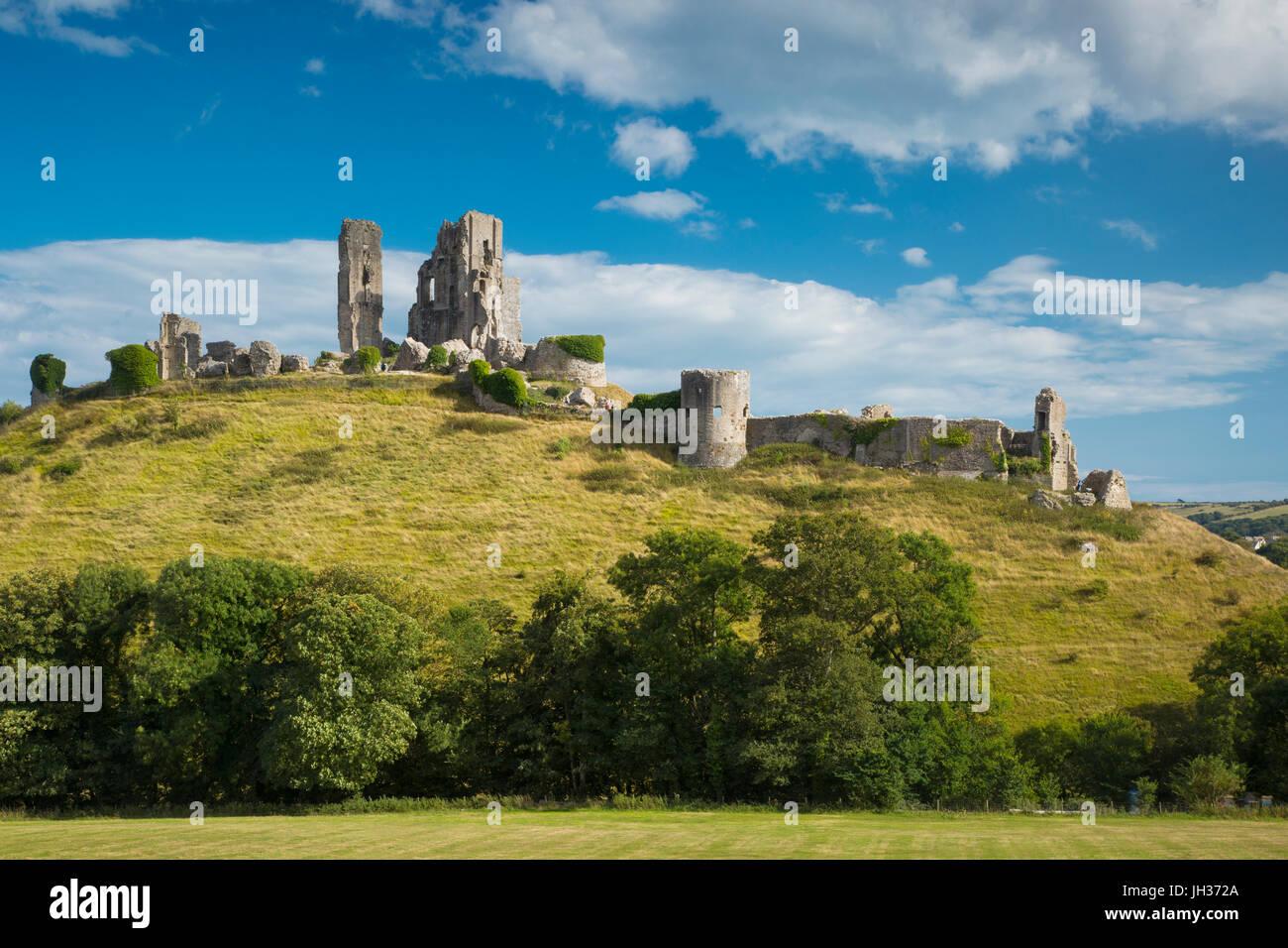 Ruinas de castillo Corfe cerca de Wareham, Isla de Purbeck, Dorset, Inglaterra Foto de stock