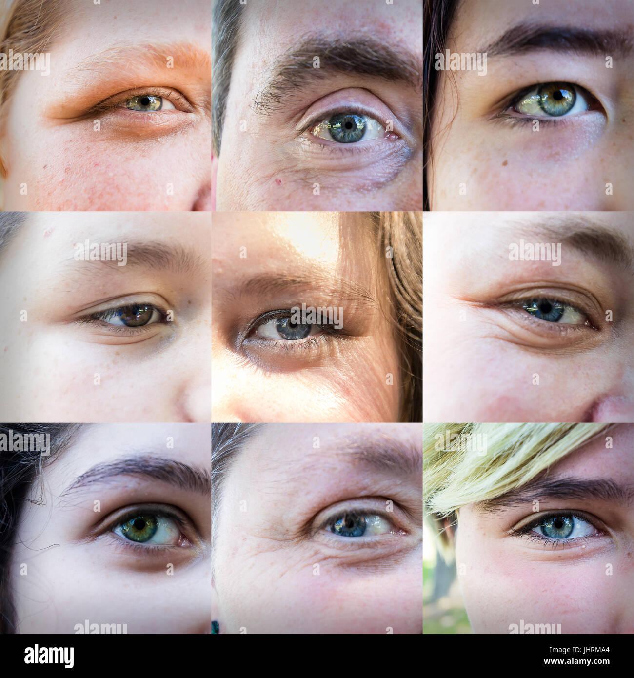 Los primeros nueve ojos yo podría conseguir que se mantenga quieto con una lente prácticamente apoyado Imagen De Stock