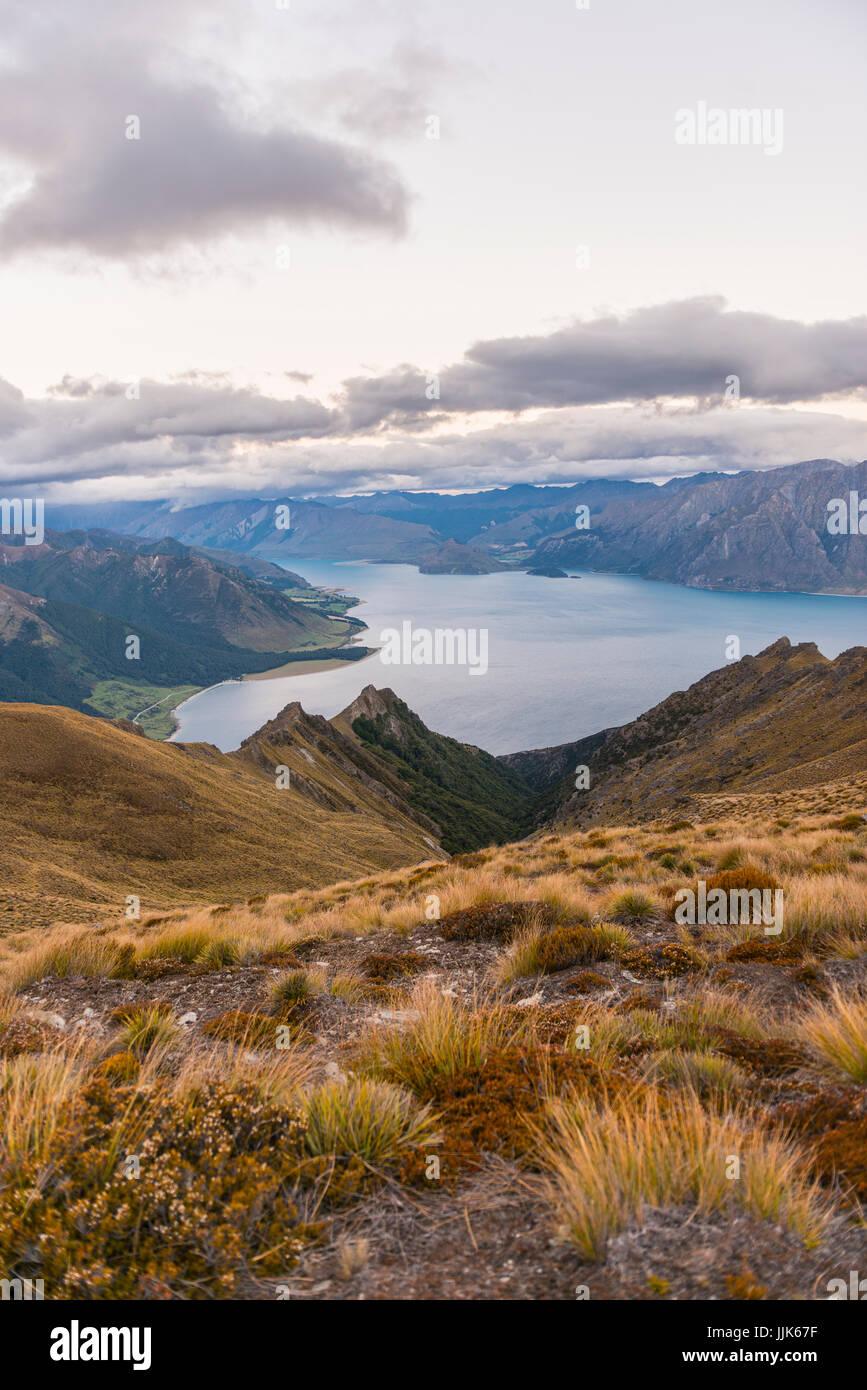 Lago Hawea y montañas, vista desde el pico del Istmo vía, Otago, Isla del Sur, Nueva Zelanda, Oceanía Imagen De Stock